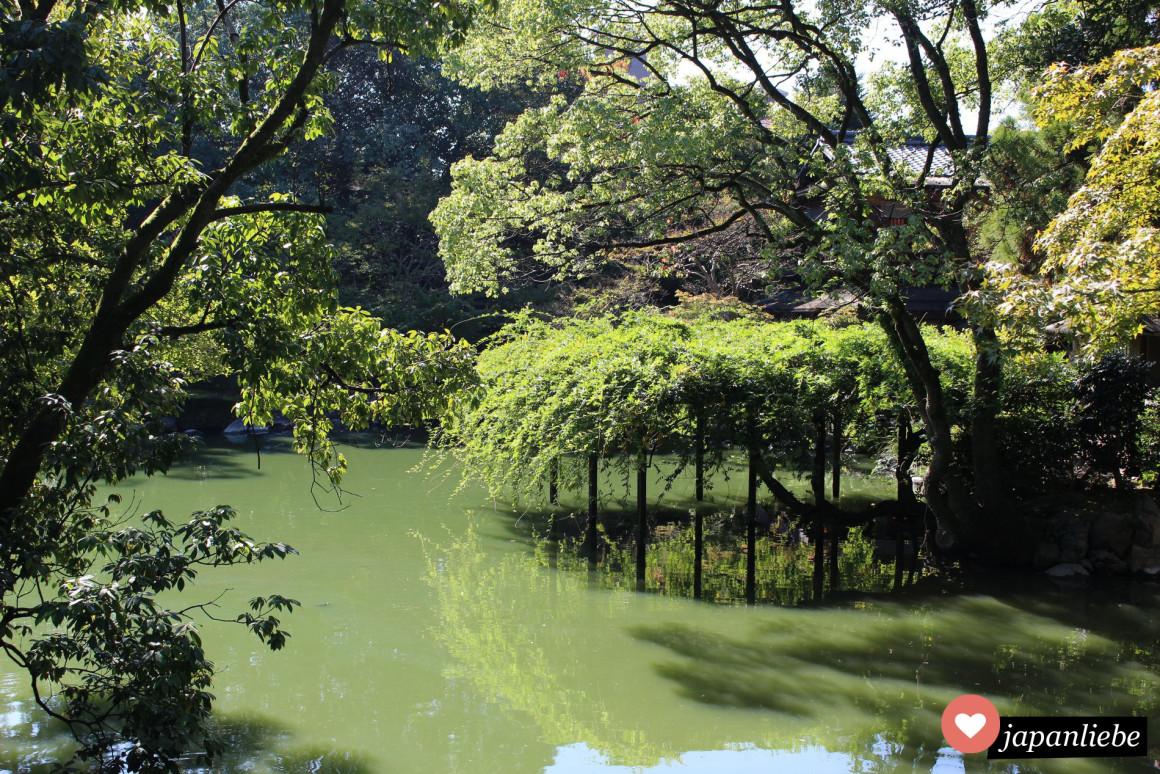 Teich rund um den Itsukushima Schrein in Kyoto