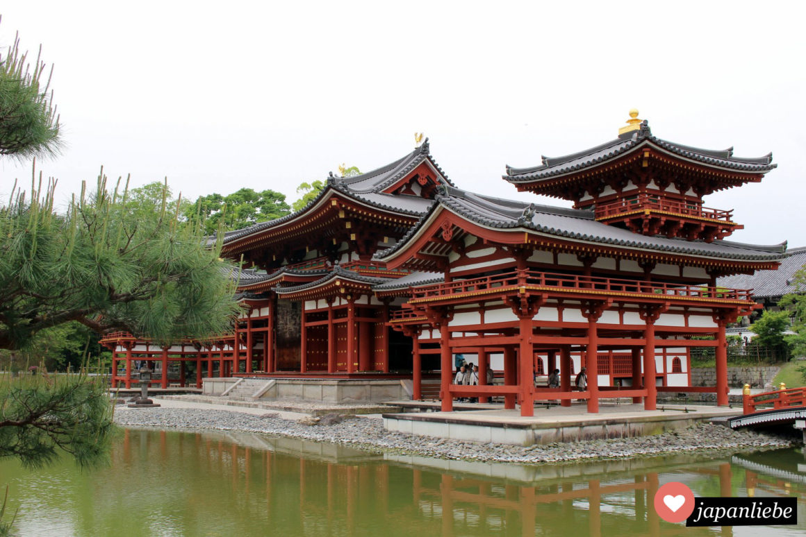 Der Byodoin Tempel in Uji nahe Kyoto gehört wegen seiner Schöhnheit zum Unesco Weltkulturerbe