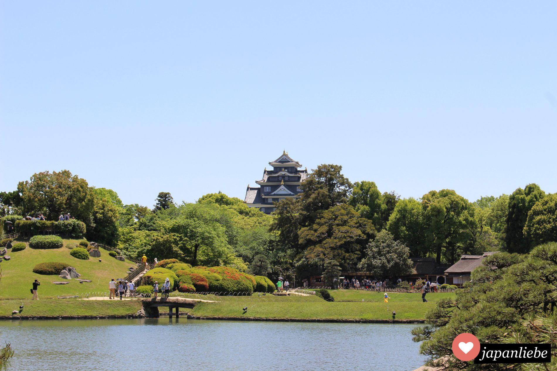 Der Koraku-en Garten In Okayama mit schwarzer Burg im Hintergrund.