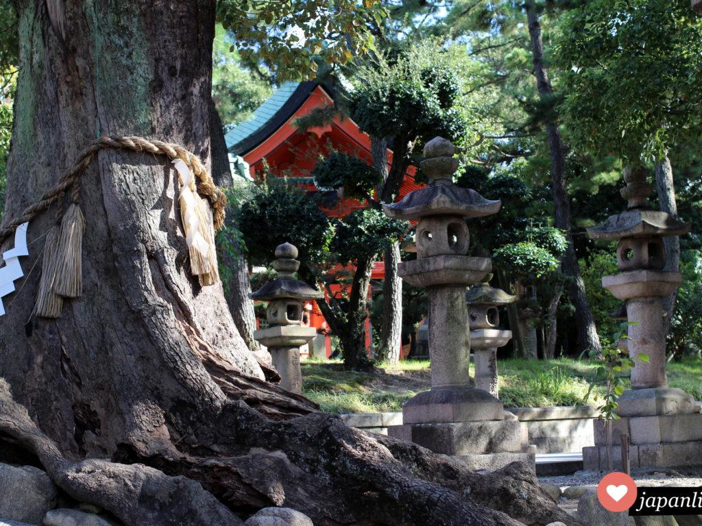 Schreine sind für mich Orte der Ruhe und Energie. So wie hier am wunderschönen Sumiyoshi Taisha Schrein in Osaka.