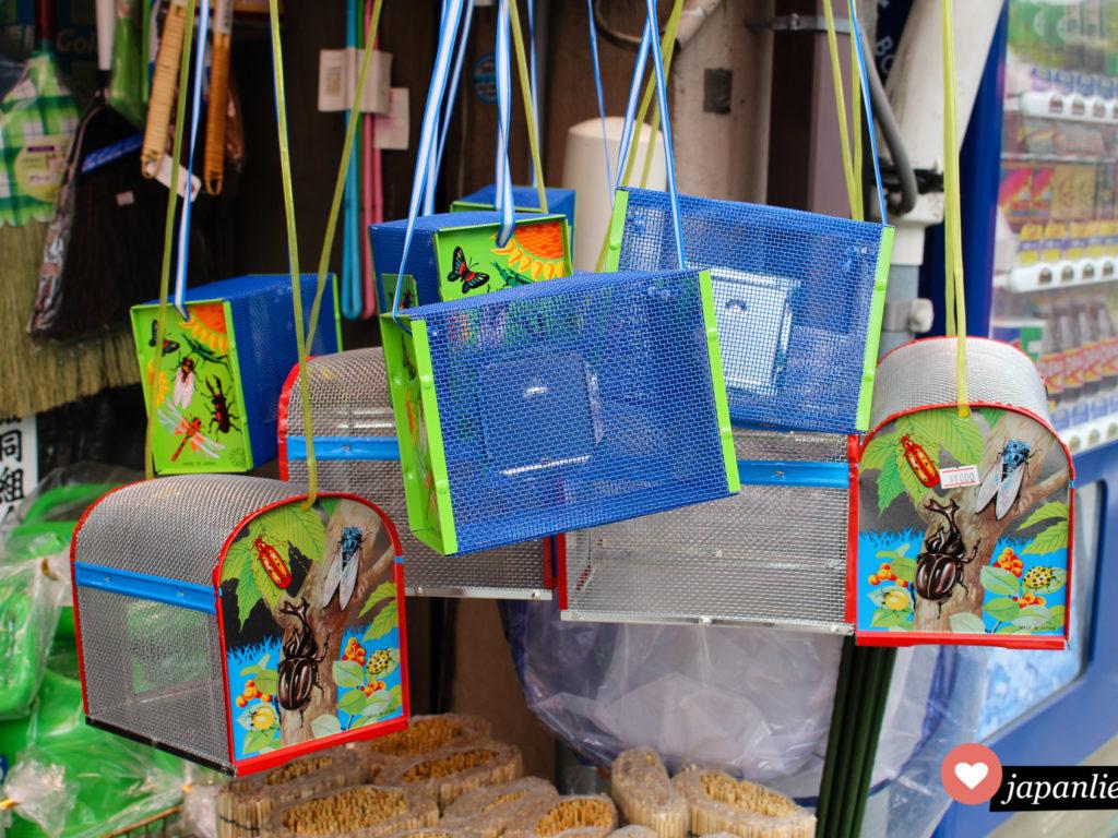 Käfige, mit denen japanische Kinder Insekten wie Nashornkäfer fangen können in Uji, Kyoto