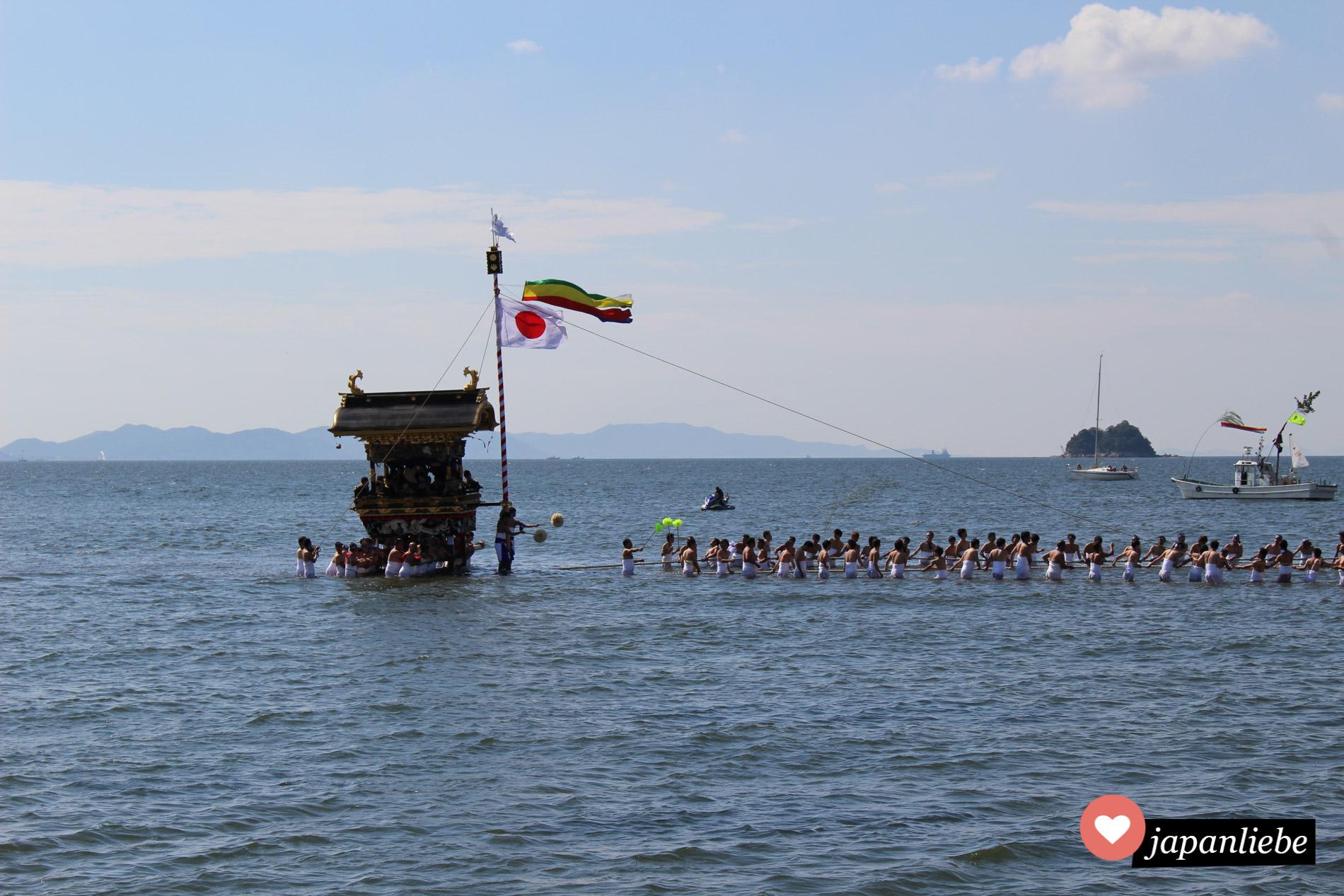 Beim Miya Matsuri in Gamagori werden mehrere Gottessänften durchs Meer gezogen.
