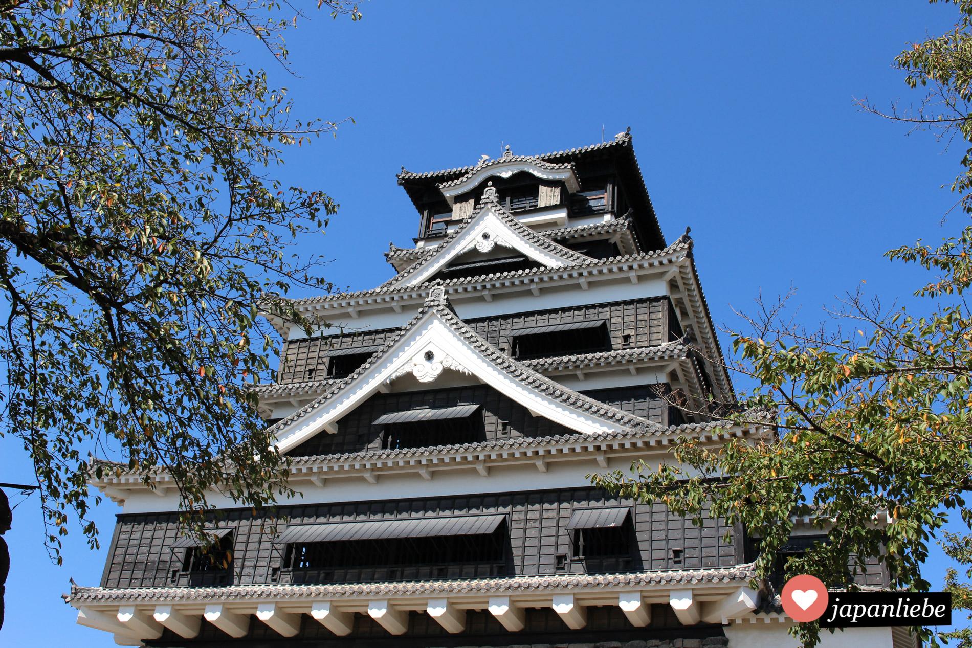 Ein Blickfang: die schwarze Burg von Kumamoto.
