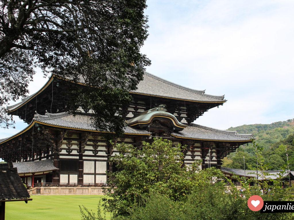 Der Todaiji Tempel in Nara ist eines der größten Holzgebäude der Welt und beherbergt eine gigantische Bhudda-Statue.