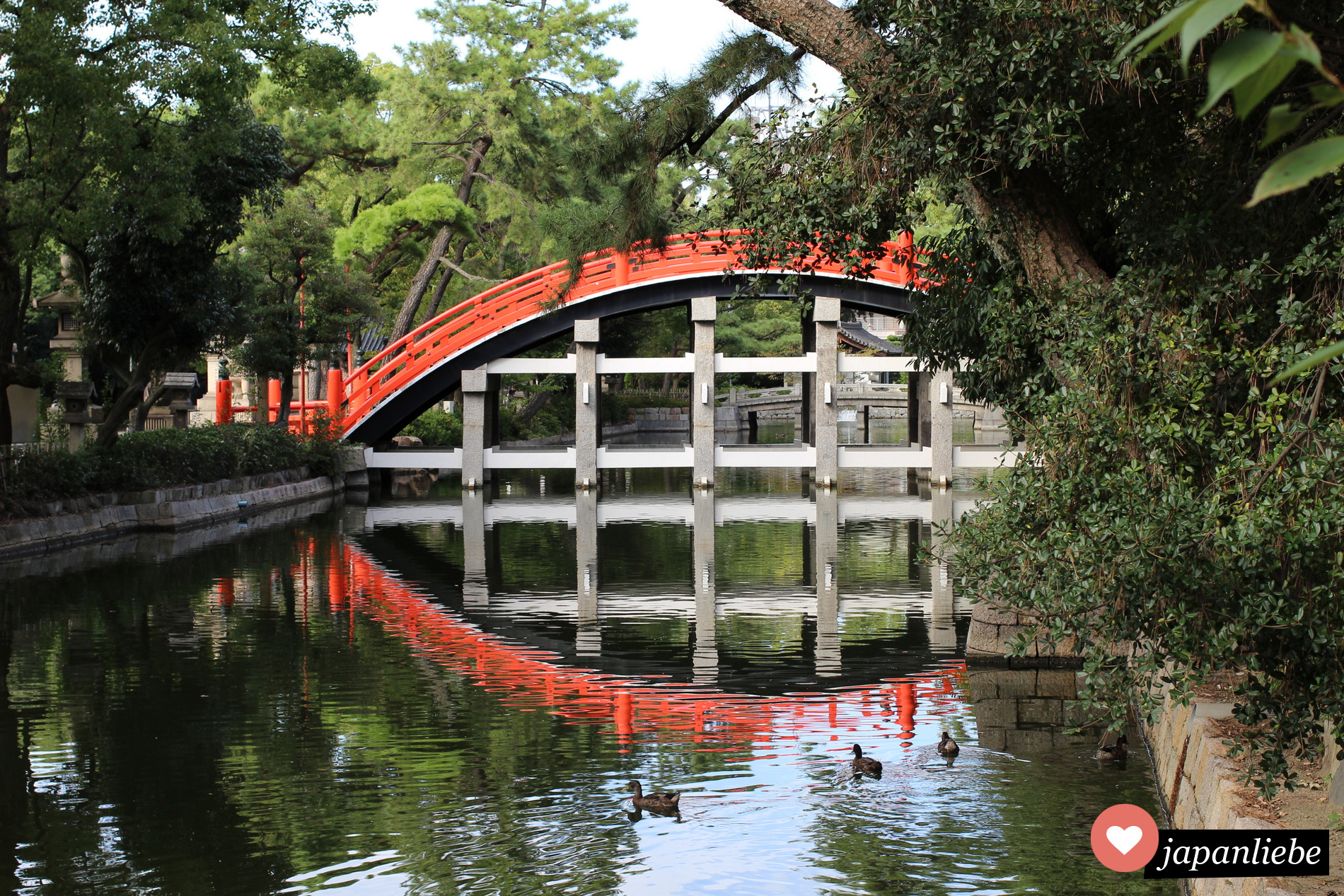 Die wunderschöne Sorihashi Brücke am Sumiyoshia Taisha Schrein in Ōsaka spiegelt sich im Wasser.