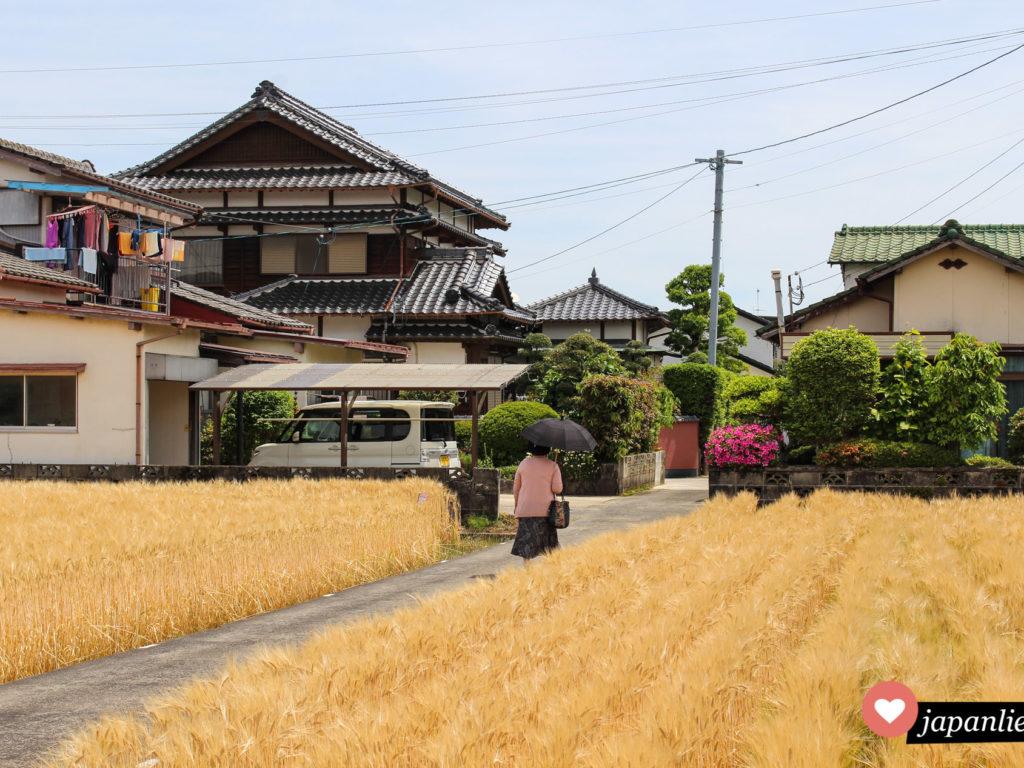 Eine Japanerin in Kashima ist gut gegen die Sonne abgeschirmt.