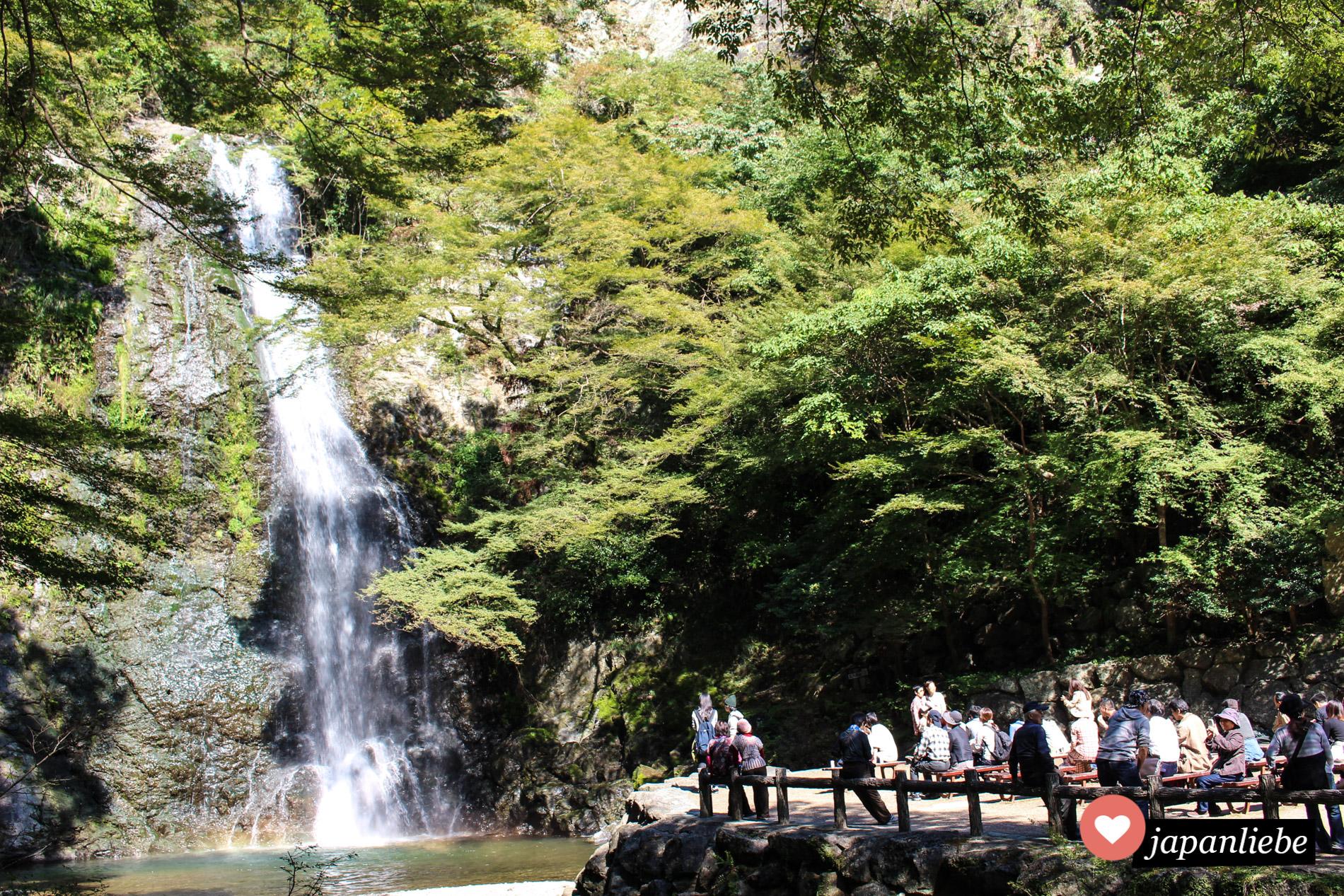 Das Zeil einer Wanderung im Minō-Park: der Minō-Wasserfall
