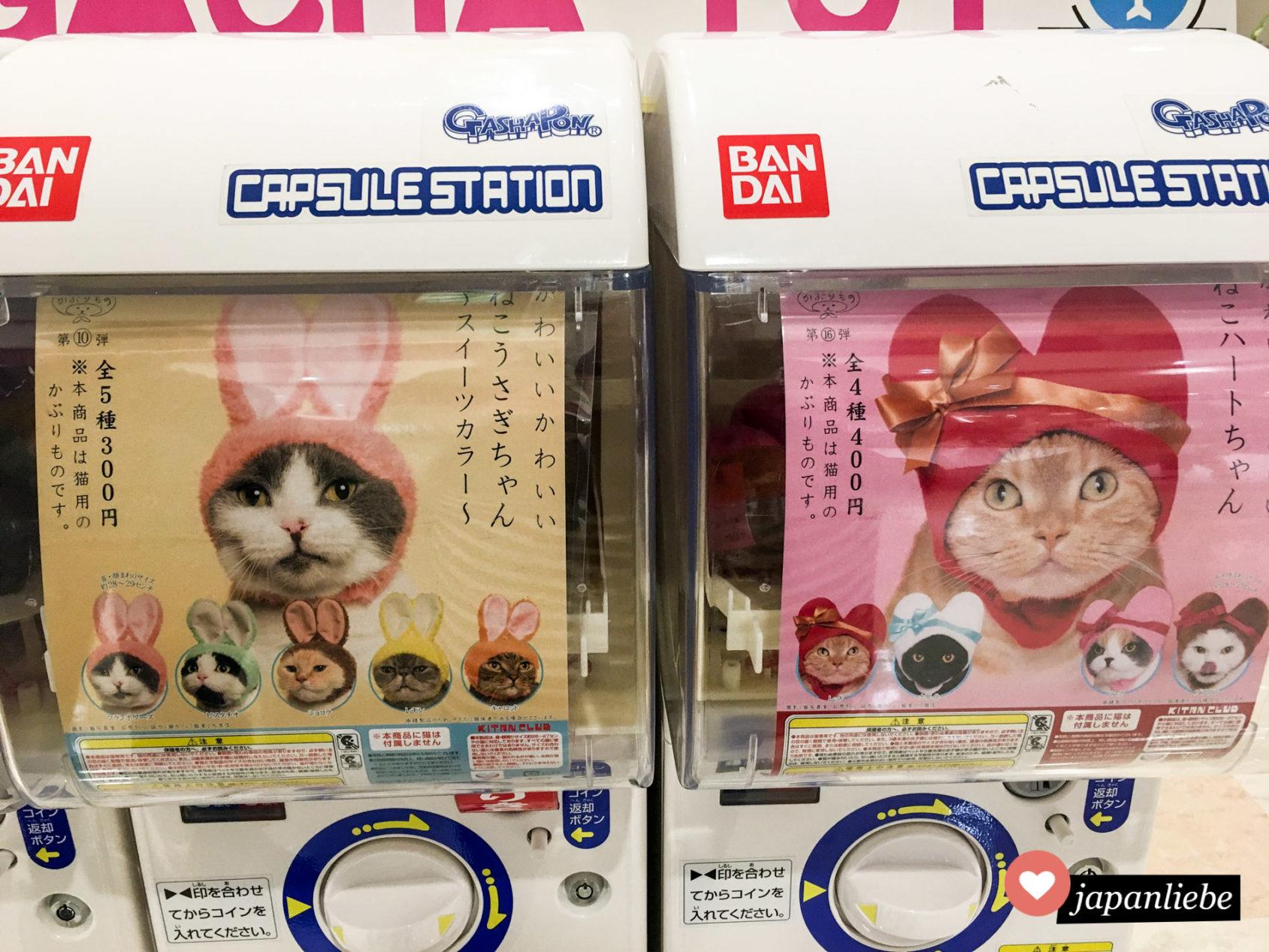 Gashapon: Mützen für Katzen