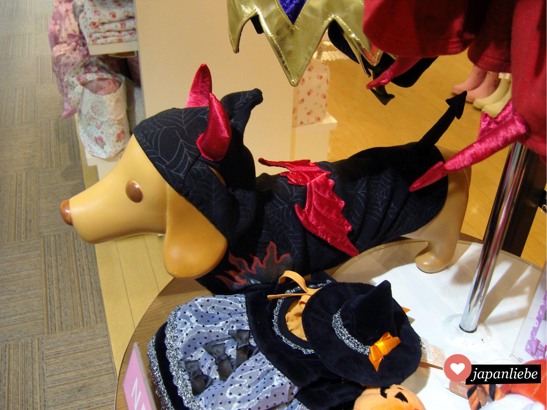 Kurz vor Halloween bekommt man auch für den Hund eine passende Verkleidung.