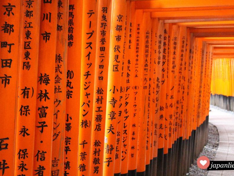Hunderte rote Tore (jap. torii) säumen den Weg zur Spitze des Inari Bergs am Fushimi Inari Taisha Schrein in Kyōto.