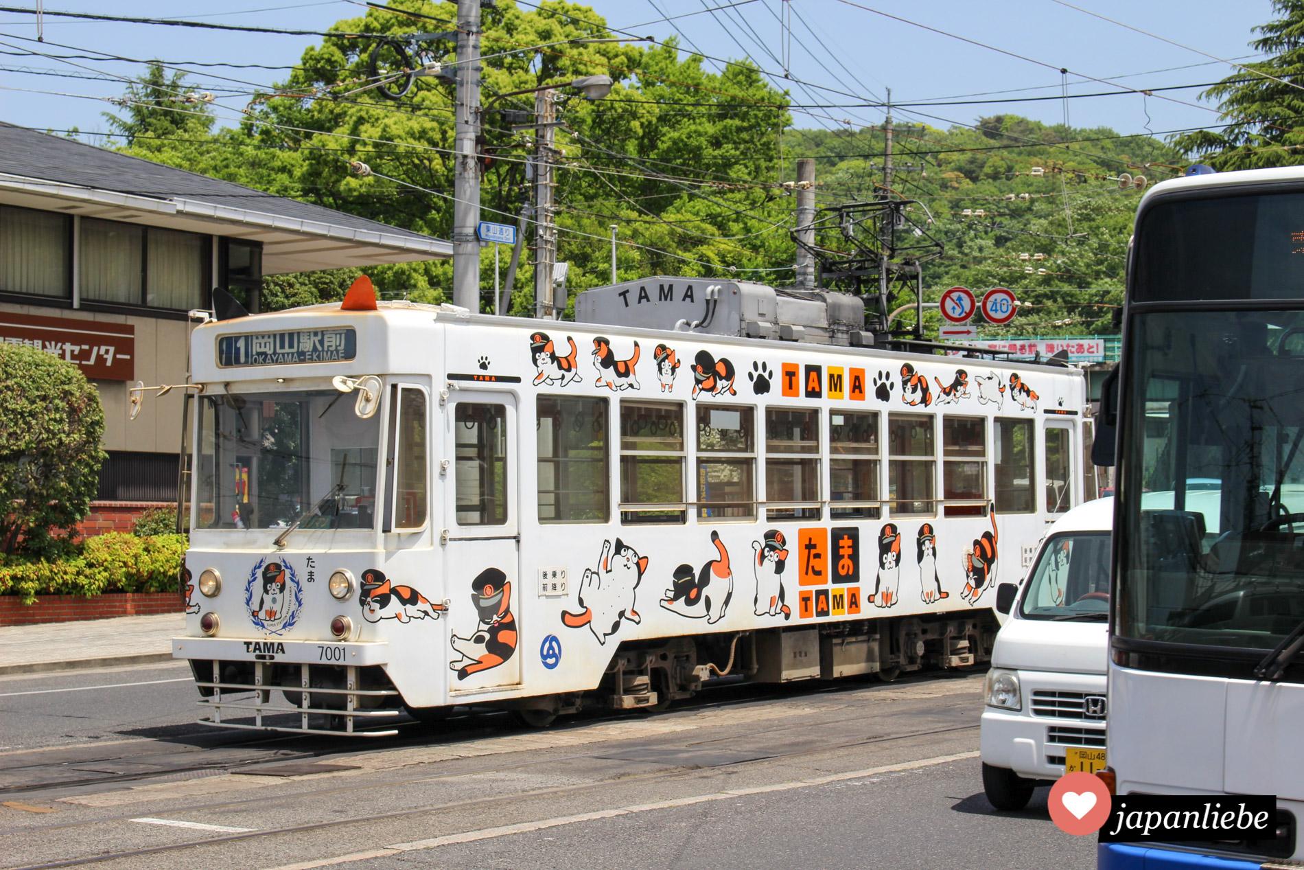 Sogar in Okayama gibt es eine Trambahn in Tama-Design.