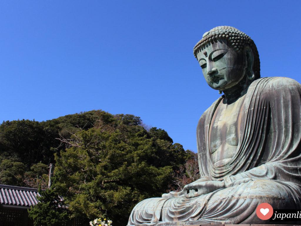Eines der Wahrzeichen Japans: der daibutsu (Großer Buddha) am Kotoku-in Tempel in Kamakura.