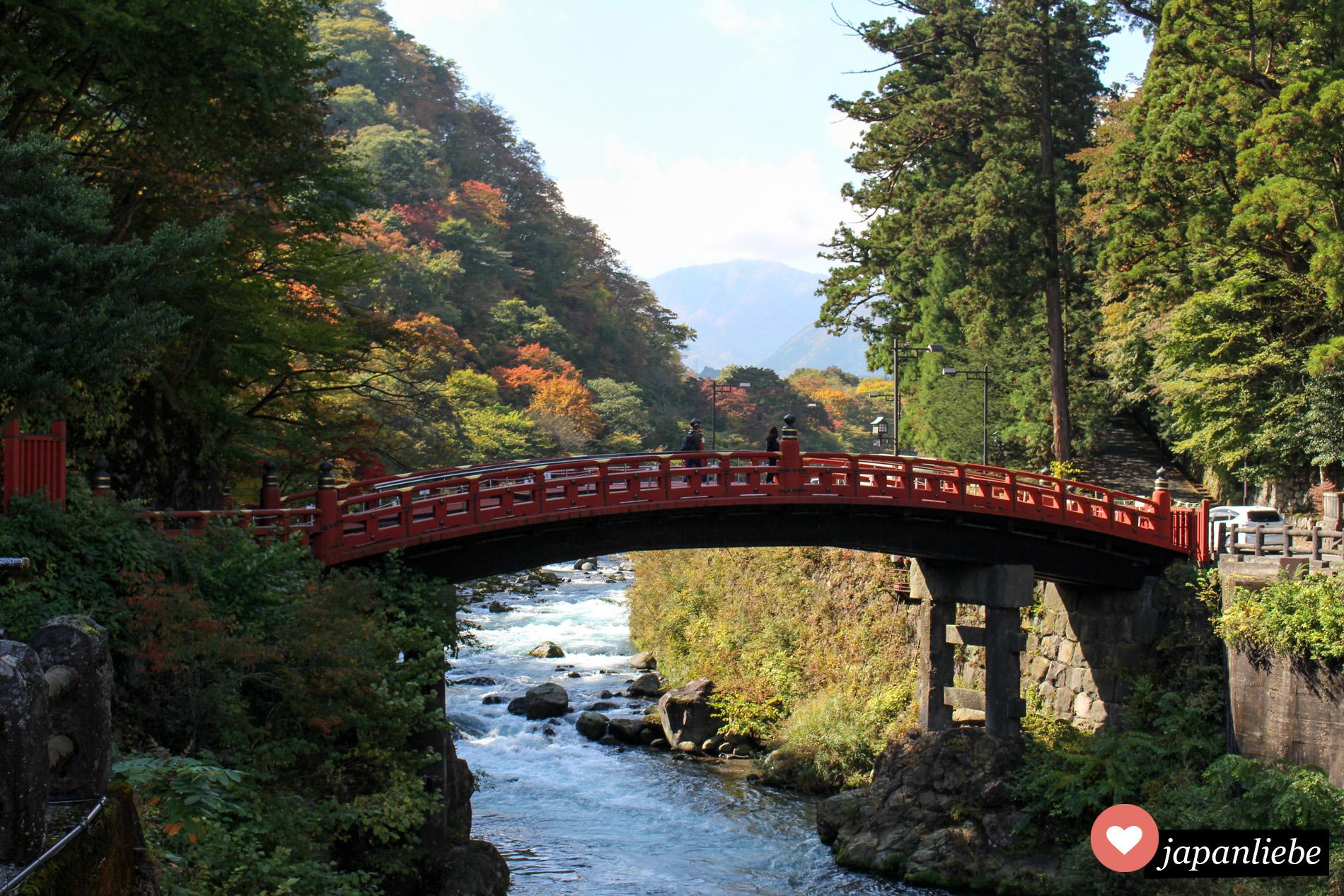 Bei Herbstlaub noch schöner als sonst leuchtet das Rot der Shinkyo Brücke in Nikkō.