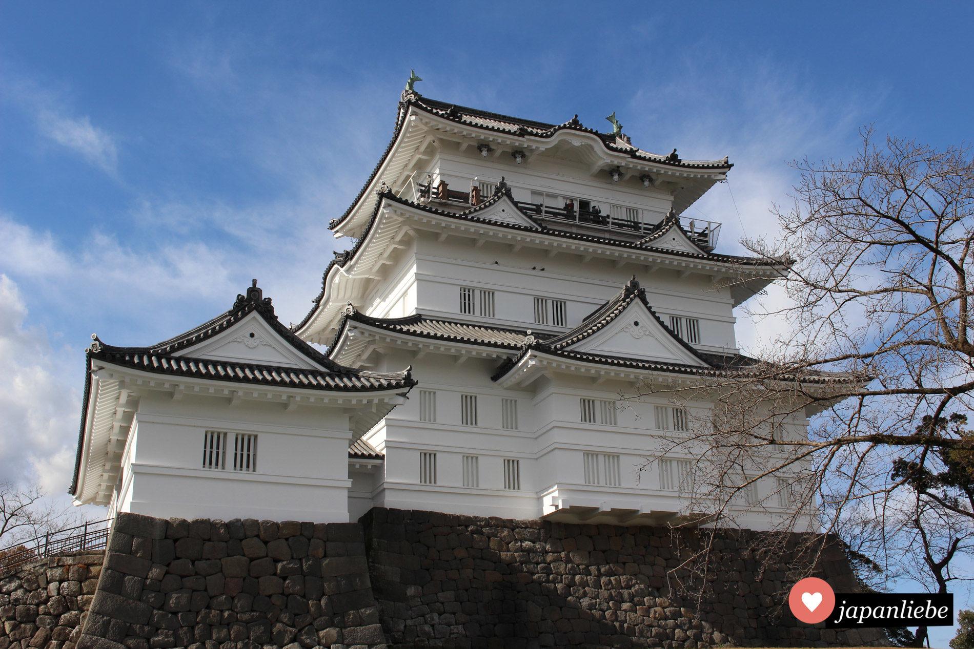 Die Burg Odawara.