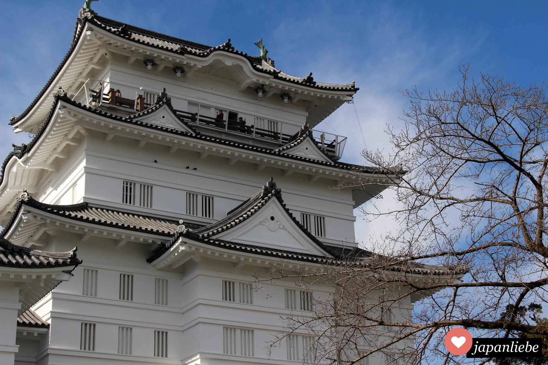 Die Burg in Odawara sehen die meisten nur beim Vorbeifahren vom Fenster des Shinkansen aus.