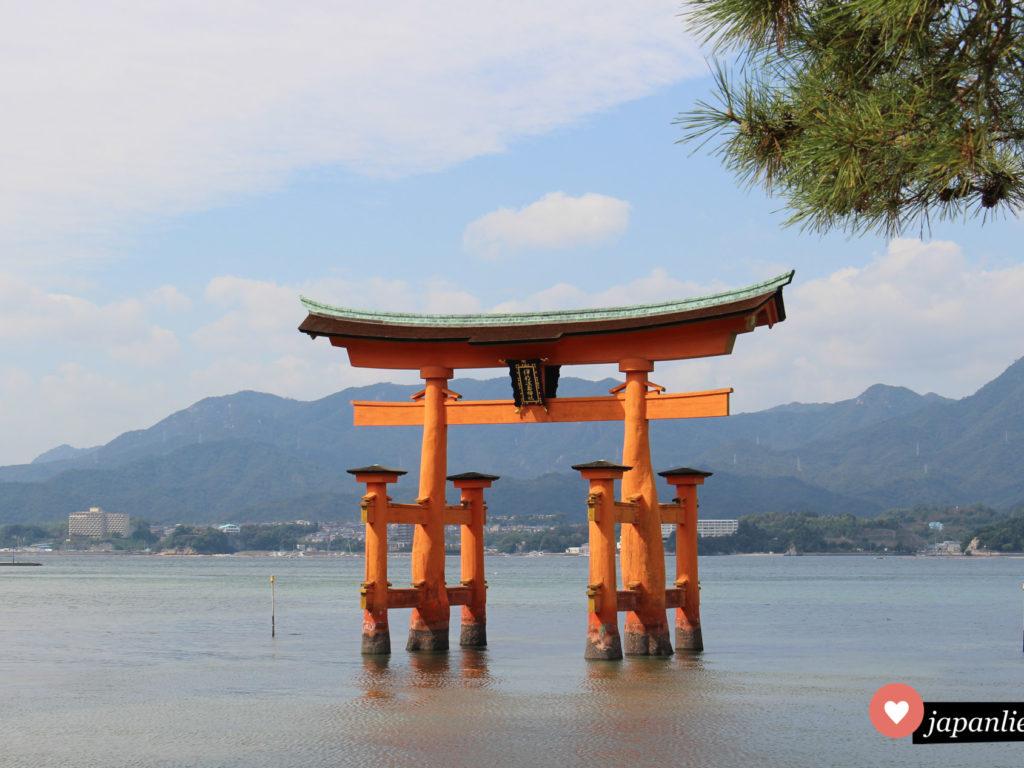 Japans berühmtestes torii: das rote Schreintor des Itsukushima Schreins auf der heiligen Insel Miyajima.