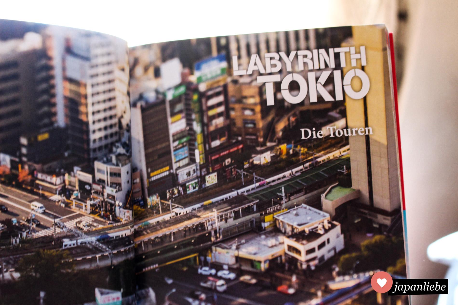 """""""Labyrinth Tokio"""" macht Lust, sofort einen längeren Aufenthalt in Japans Hauptstadt zu buchen."""