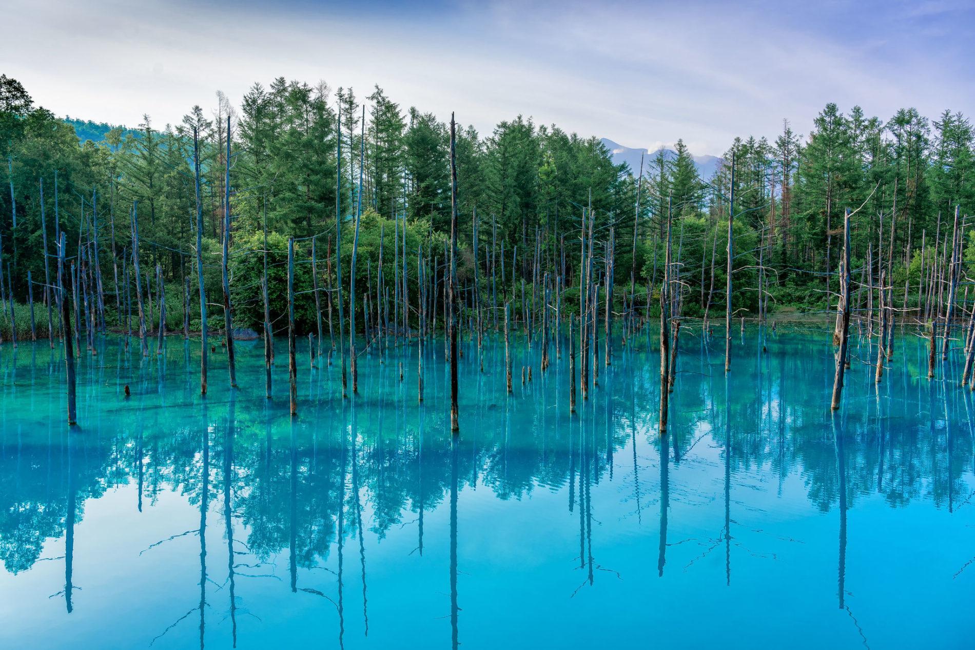 Durch ein Hintergrund auf Apple Computern erlangte der blaue Teich auf Hokkaidō Weltberühmtheit.