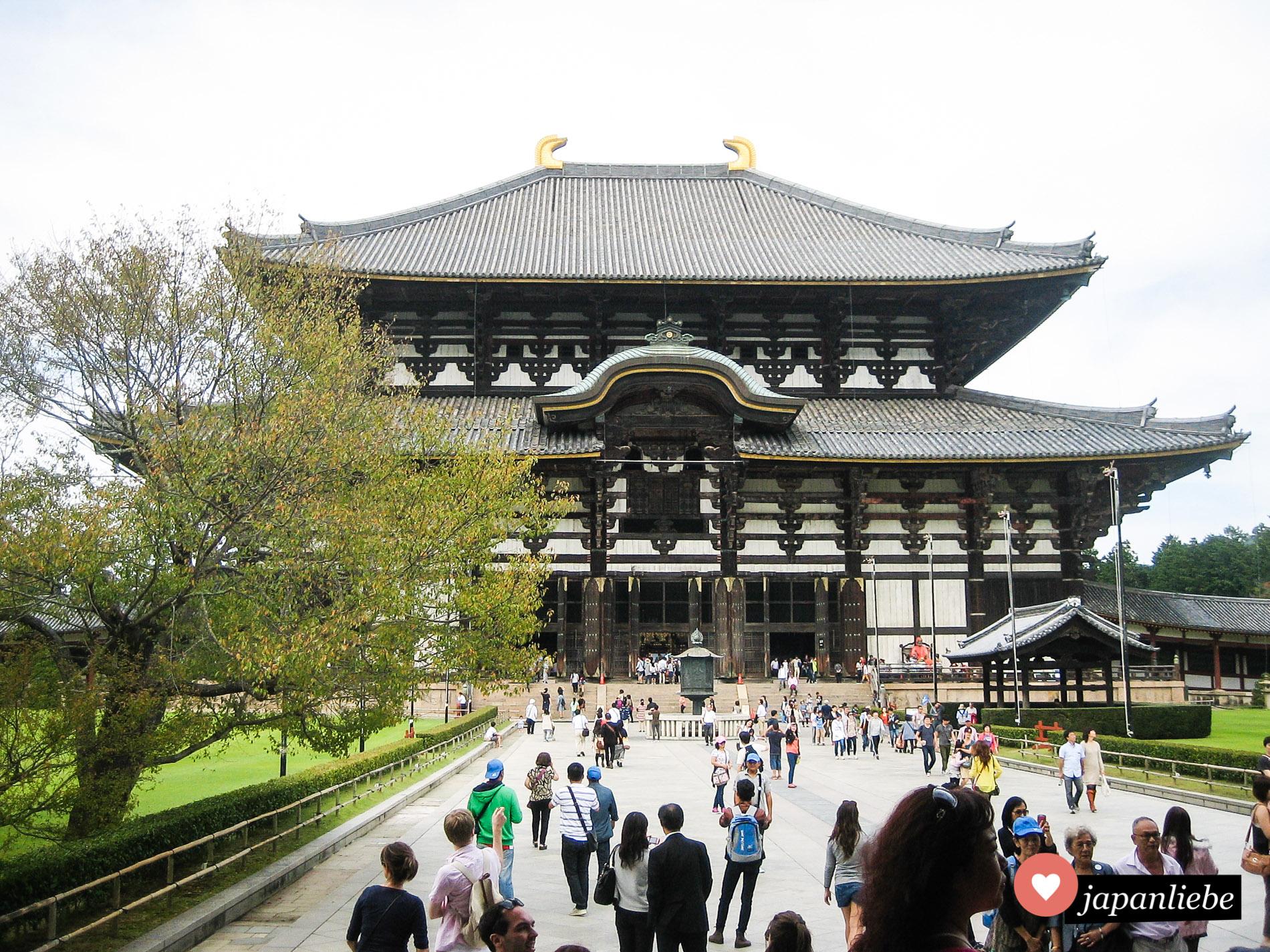 Die Haupthalle des Todai-ji-Tempels in Nara behergbert eine riesige Buddhastatue und gehört zum UNESCO Weltkulturerbe.