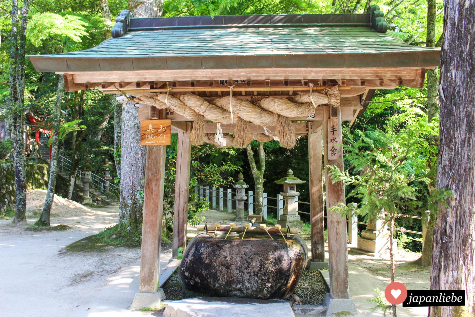Der temizuya Schreinbrunnen am Tamatsukuriyu Schrein ist wie in der Gegend üblich mit einem dicken shimenawa Reisstrohseil geschmückt.