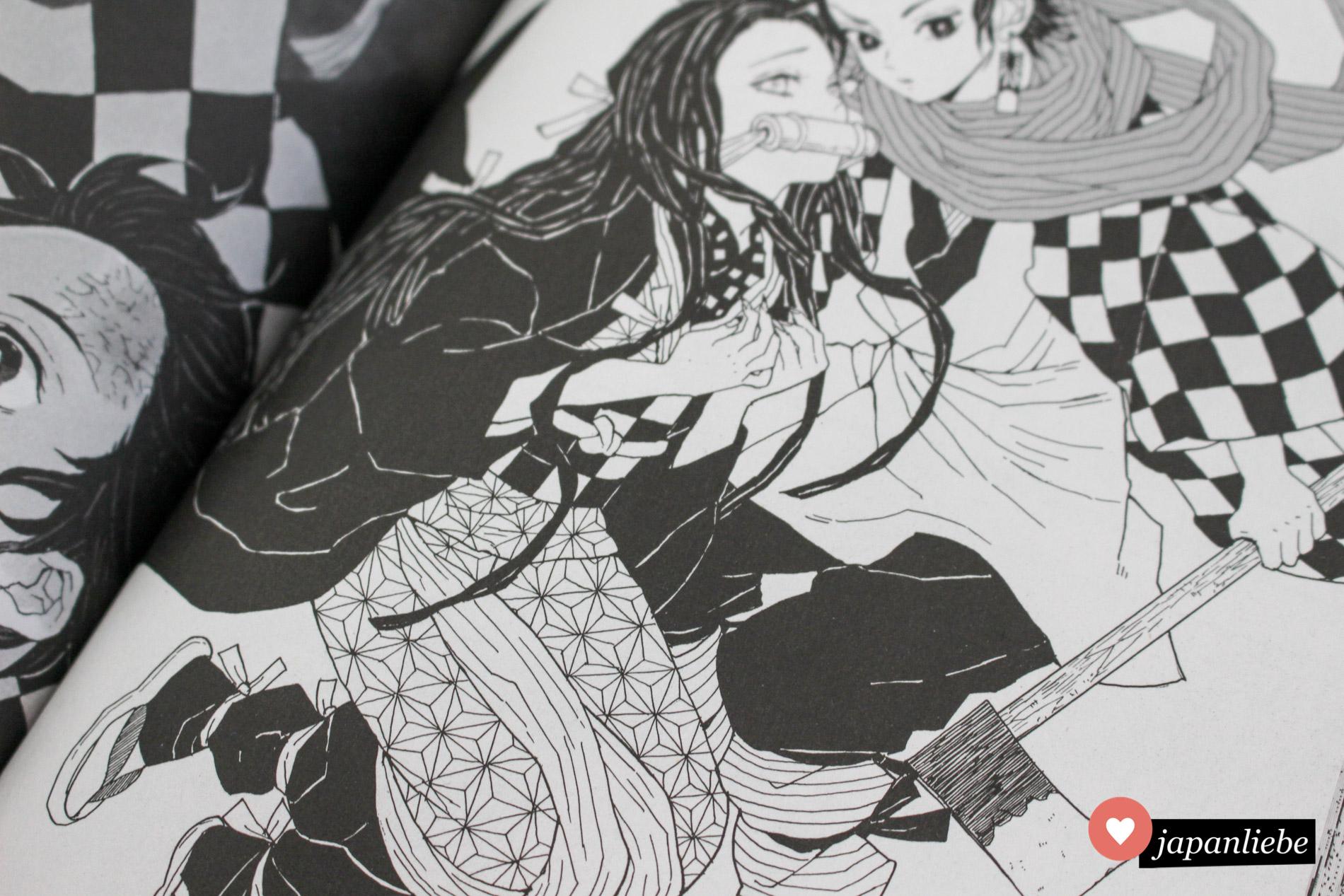 """Bei den Artworks kommen besonders viele Muster zum Einsatz. Hier am auffälligsten das """"asa no ha"""" – Hanfblüte."""