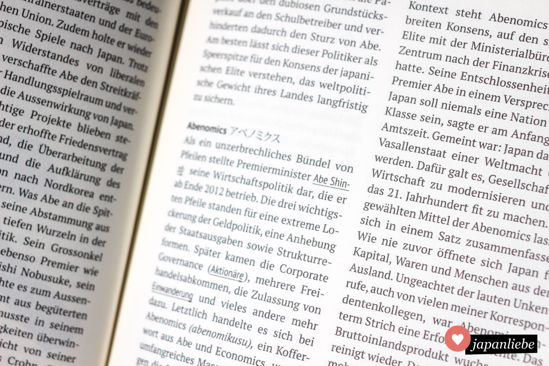 """Macht einen verstaubten Eindruck, kommt aber mit brandaktuellem Inhalt: """"Abc 4 Japan"""" von Martin Fritz."""