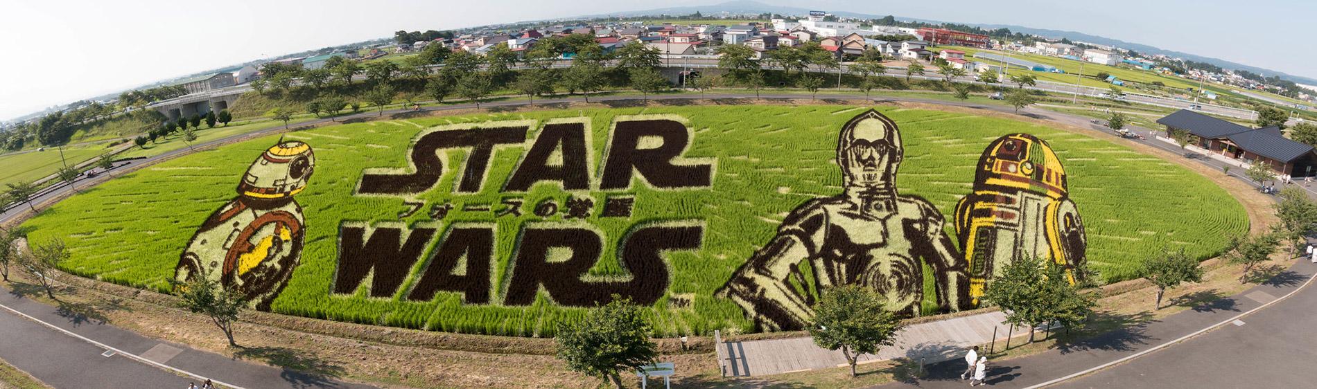 Reisfeldkunst mit einem Star Wars Motiv in Inakadate.