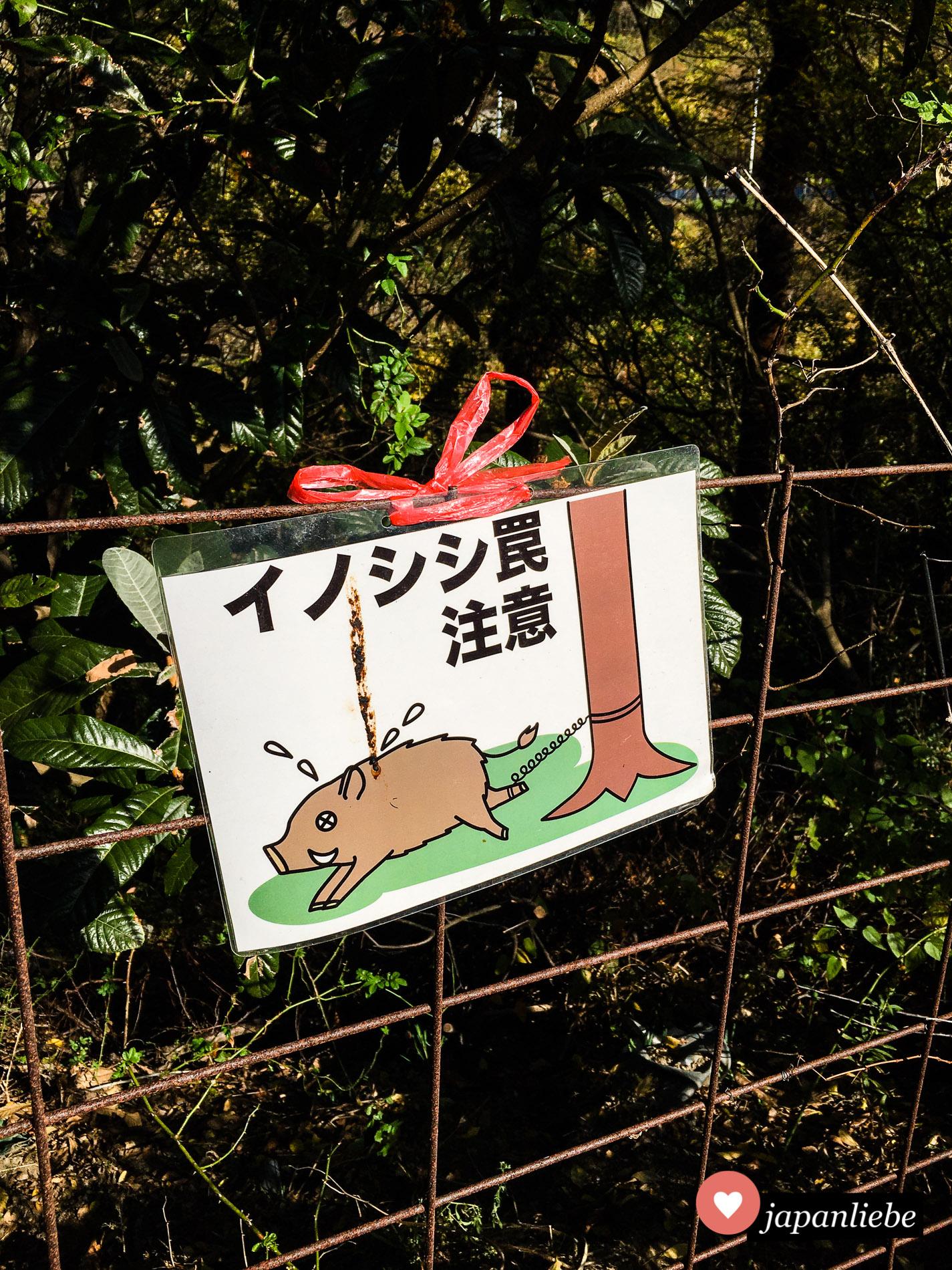 Auf der Insel Oshima vor Takamatsu scheint es ein großes Problem mit Wildschweinen zu geben. Die schiere Anzahl der Warnschilder lässt zumindest darauf schließen.