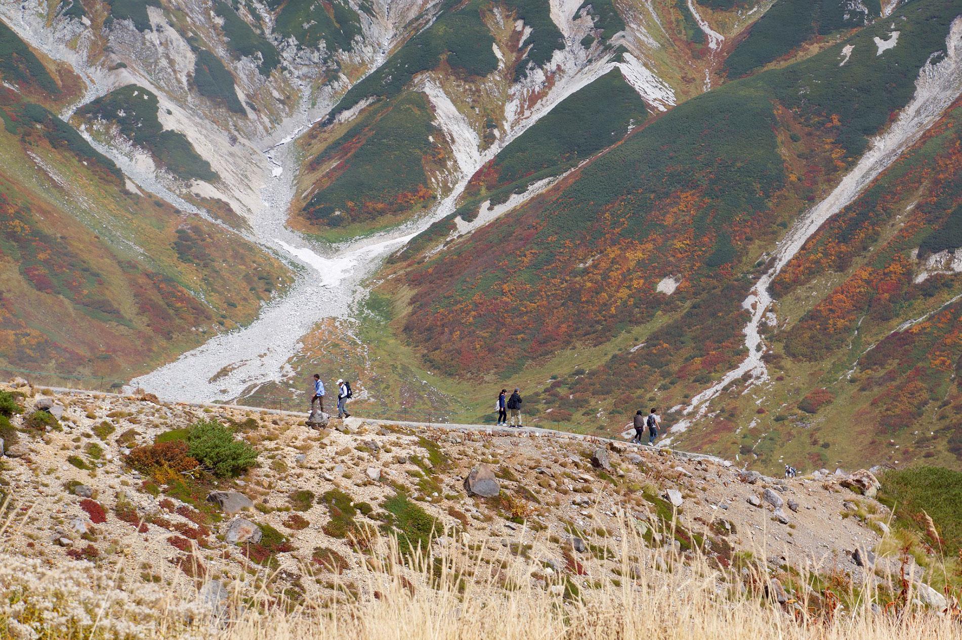 Im Herbst färben sich weite Strecken der Tateyama-Kurobe-Alpine-Route spektakulär.
