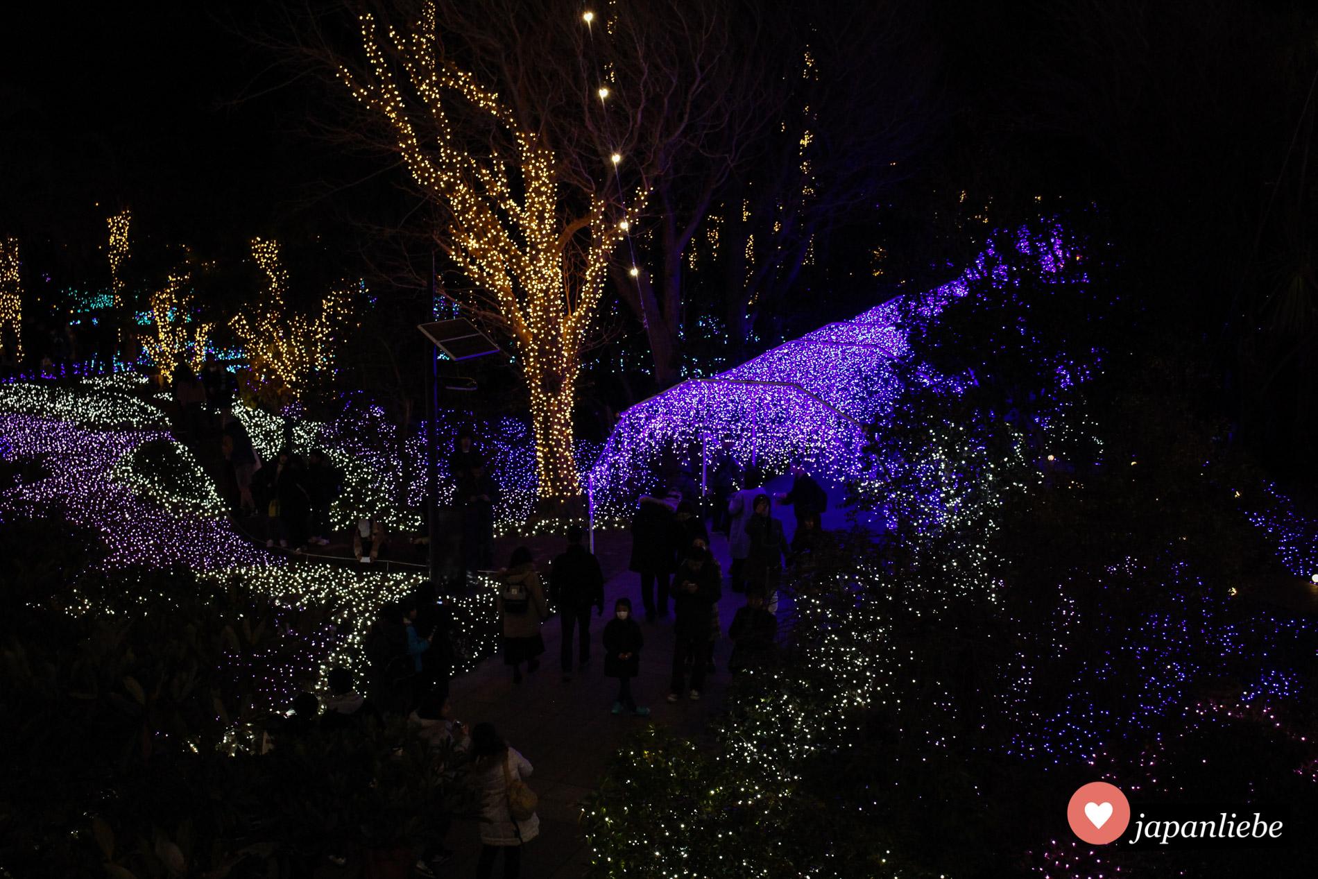 Um den Jahreswechsel wird der Smuel Coccking Garten auf Enoshima herrlich beleuchtet.