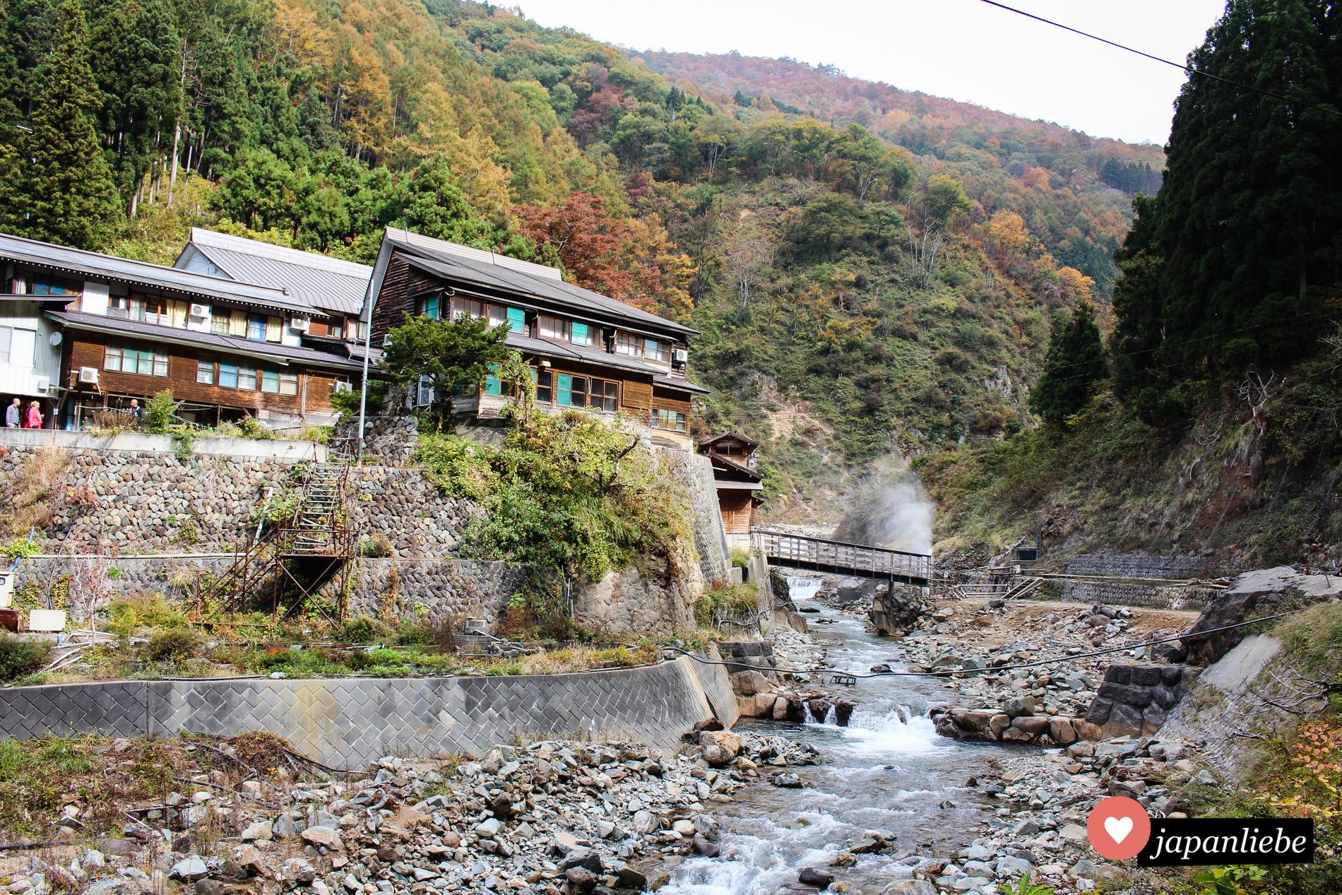 Wo die Geschichte der badenden Schneeaffen begann: an diesem ryōkan lernten die Affen das heiße onsen-Wasser zu schätzen.