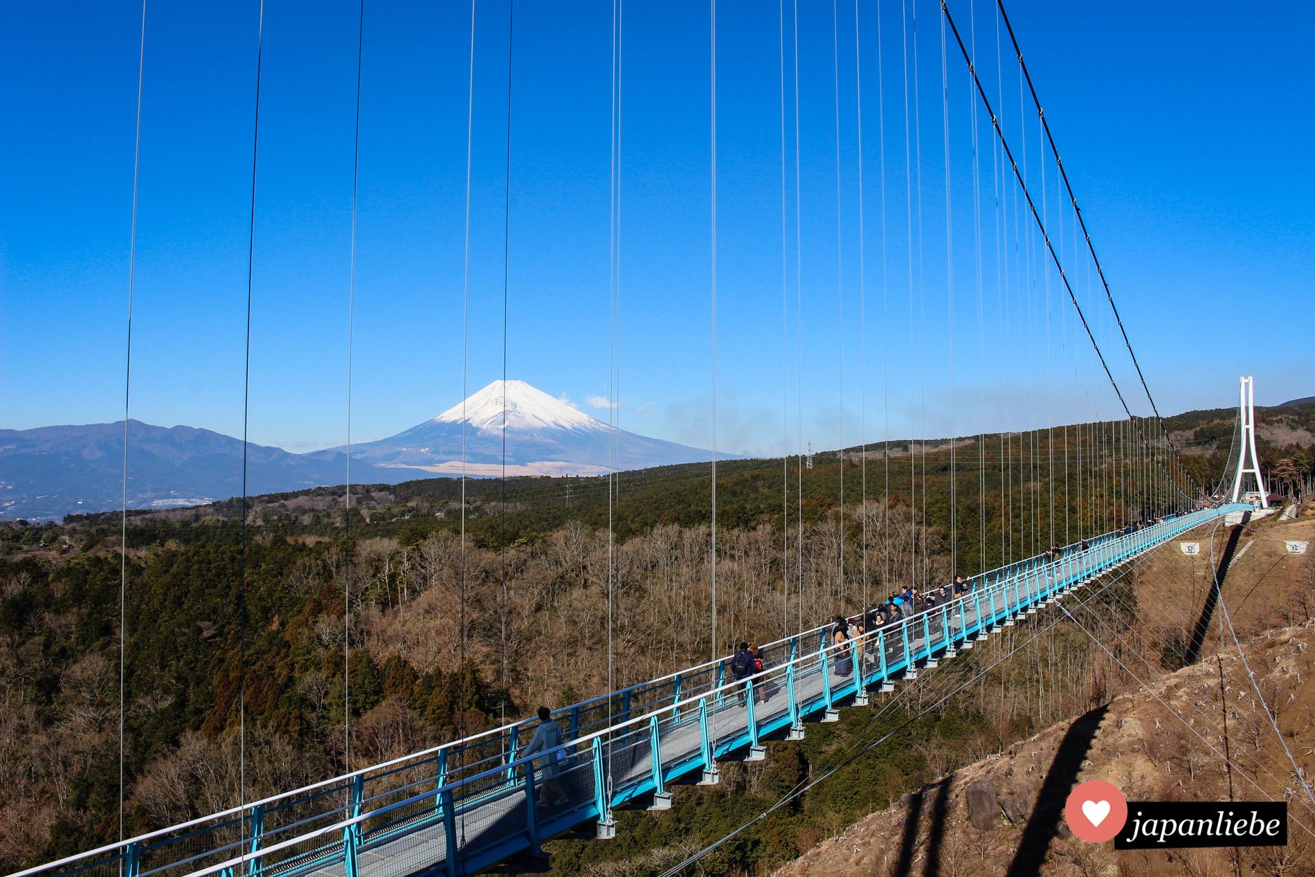 Einen traumhaften Blick auf den Fuji bietet die längste Fußgänger-Hängebrücke Japans: der Mishima Skywalk.
