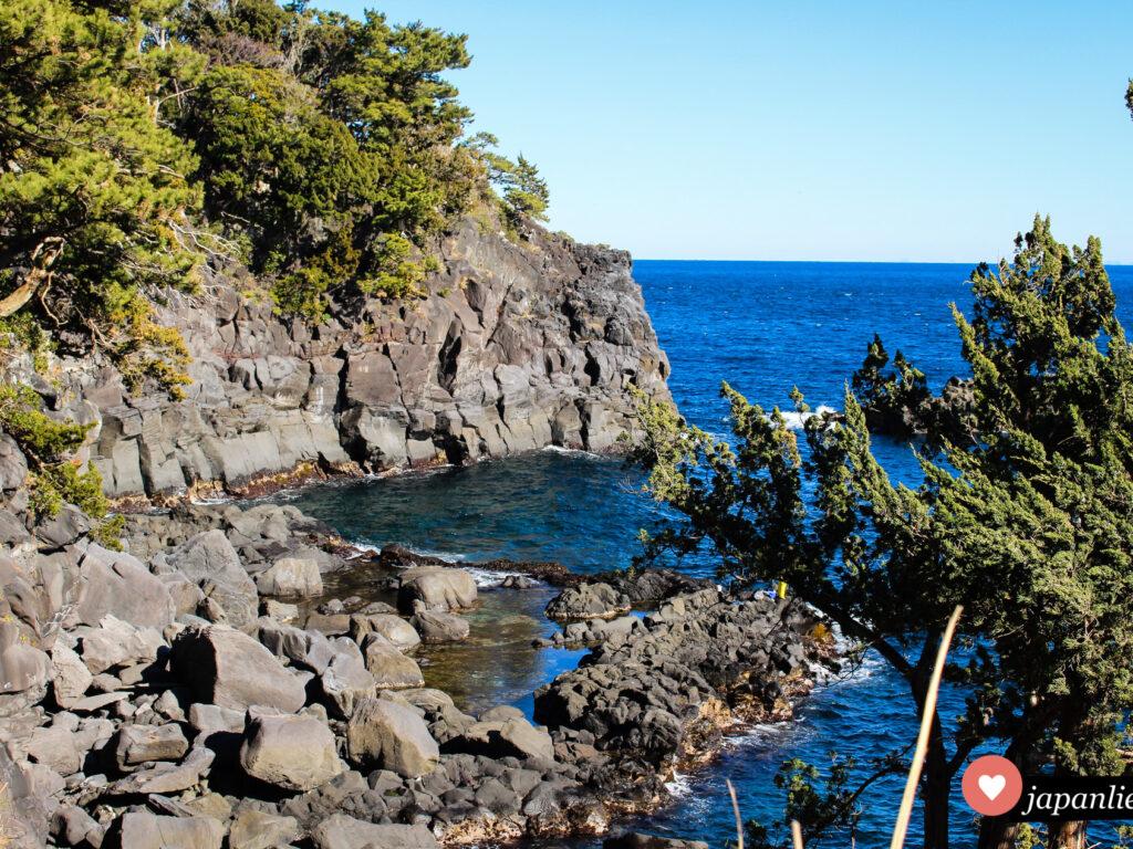 Geheimtipp für deine Japanreise: eine Wanderung entlang der Jogasaki-Küste auf der Izu-halbinsel.