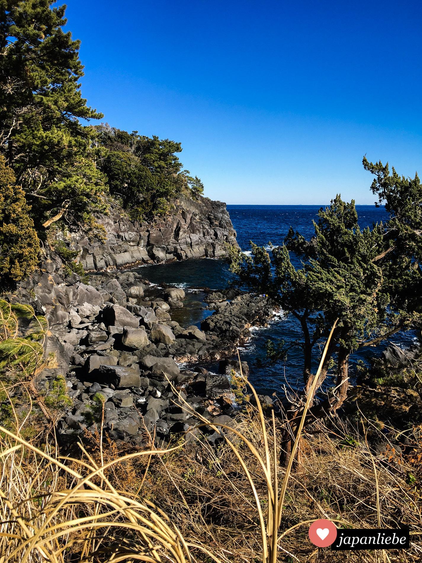 Die Jogasaki-Küste lässt das Herz von Geologie-Fans höher schlagen.