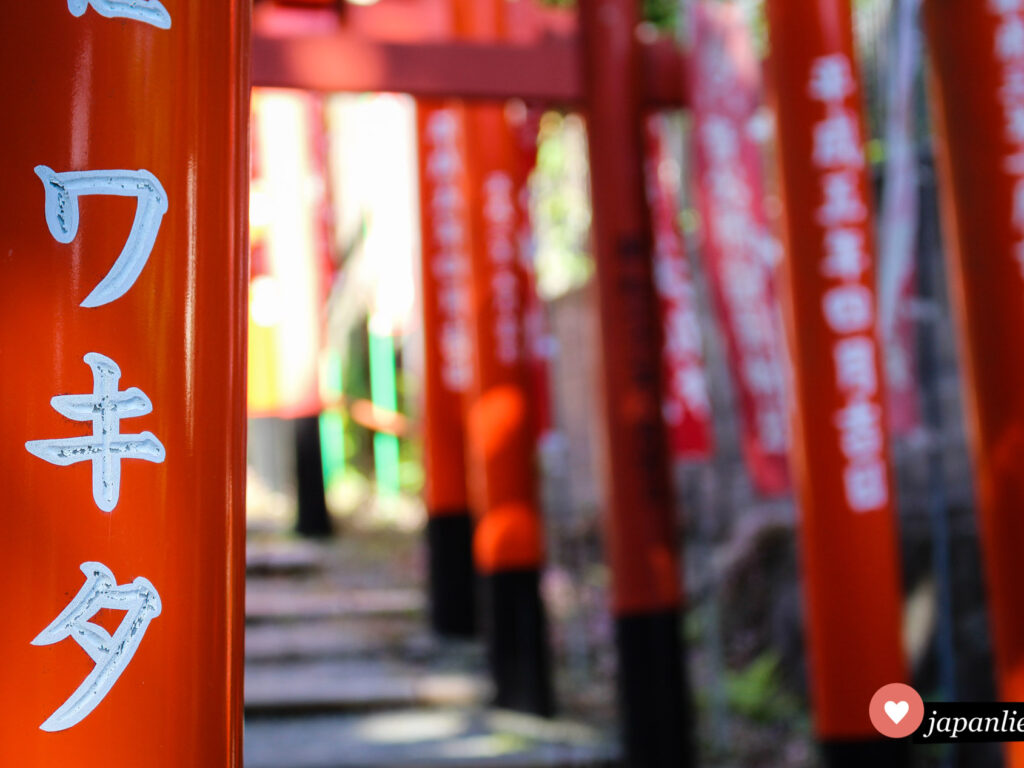 Rote torii auf dem Weg zum Atago Schrein in Fukuoka.