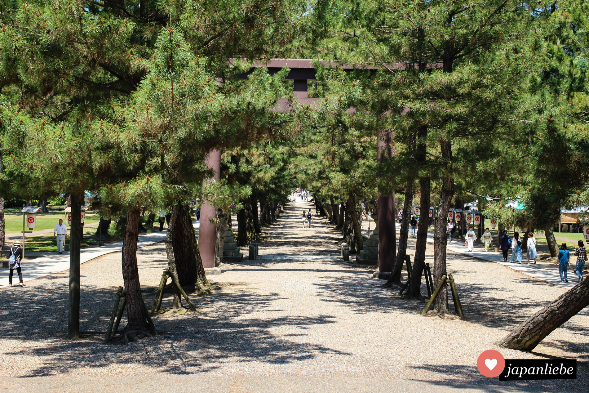 Wer am Izumo-taisha Schrein in der Mitte geht, zeigt, dass er nicht weiß, dass diese den Göttern vorbehalten ist.