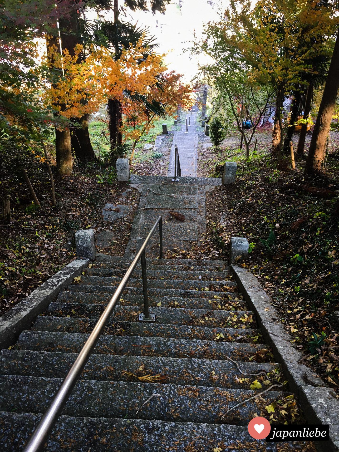 Oft bedeutet ein Schreinbesuch viele Treppenstufen. So auch am Ten-jinja Schrein in Uchiko.