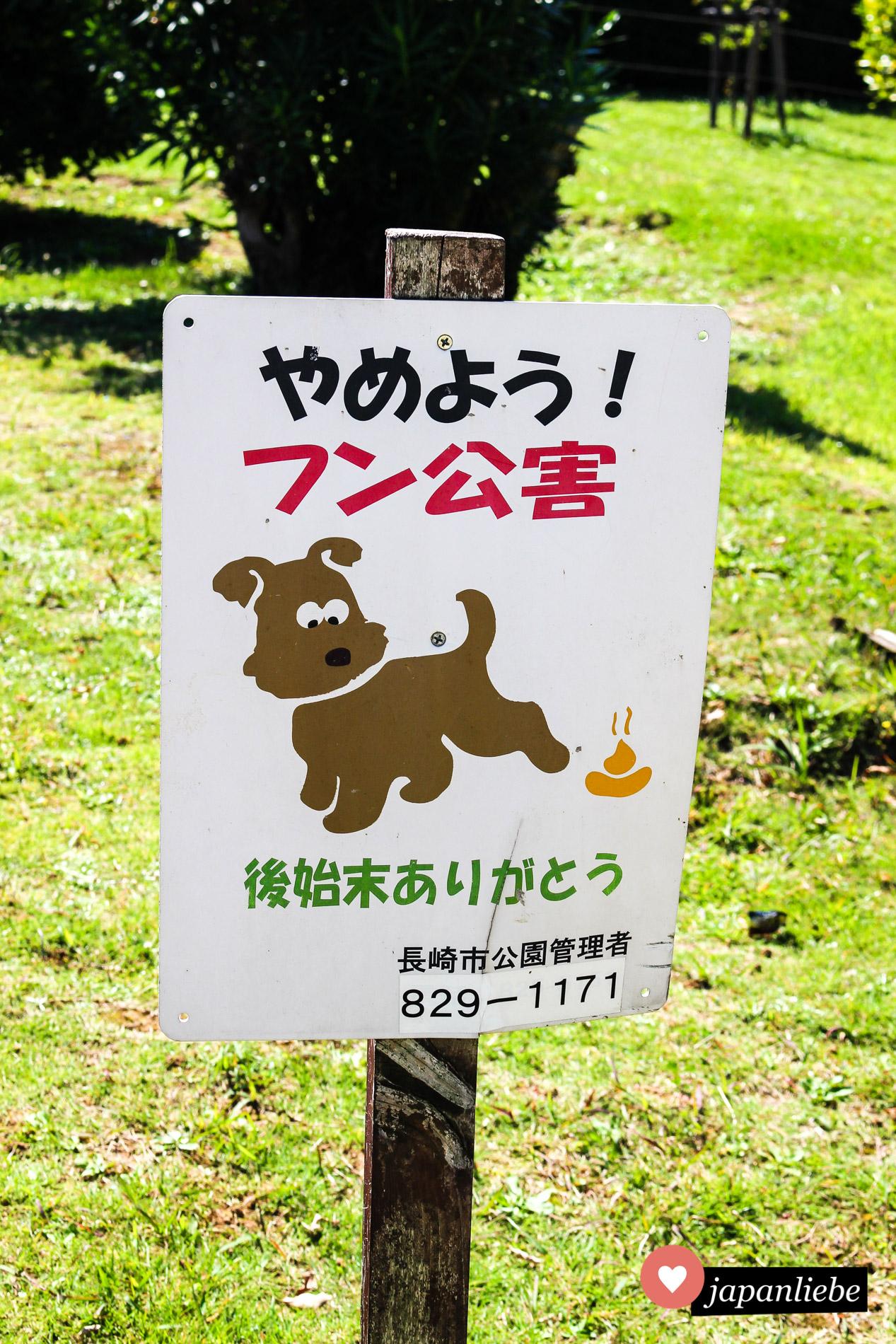 In Nagasaki sehen Hundehäufchen goldfarben aus.