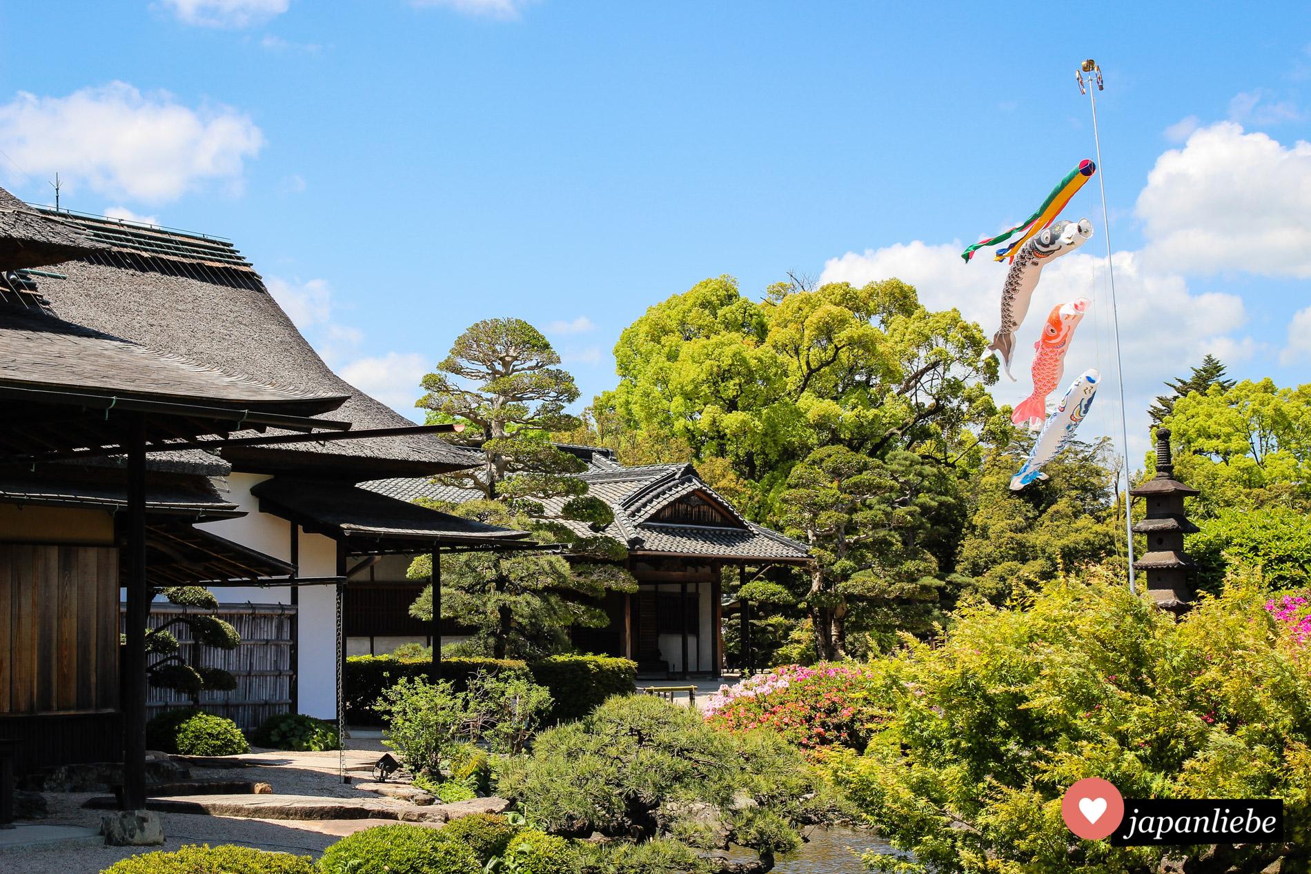 Wehende koinobori-Flaggen im Kōraku-en-Garten in Okayama.