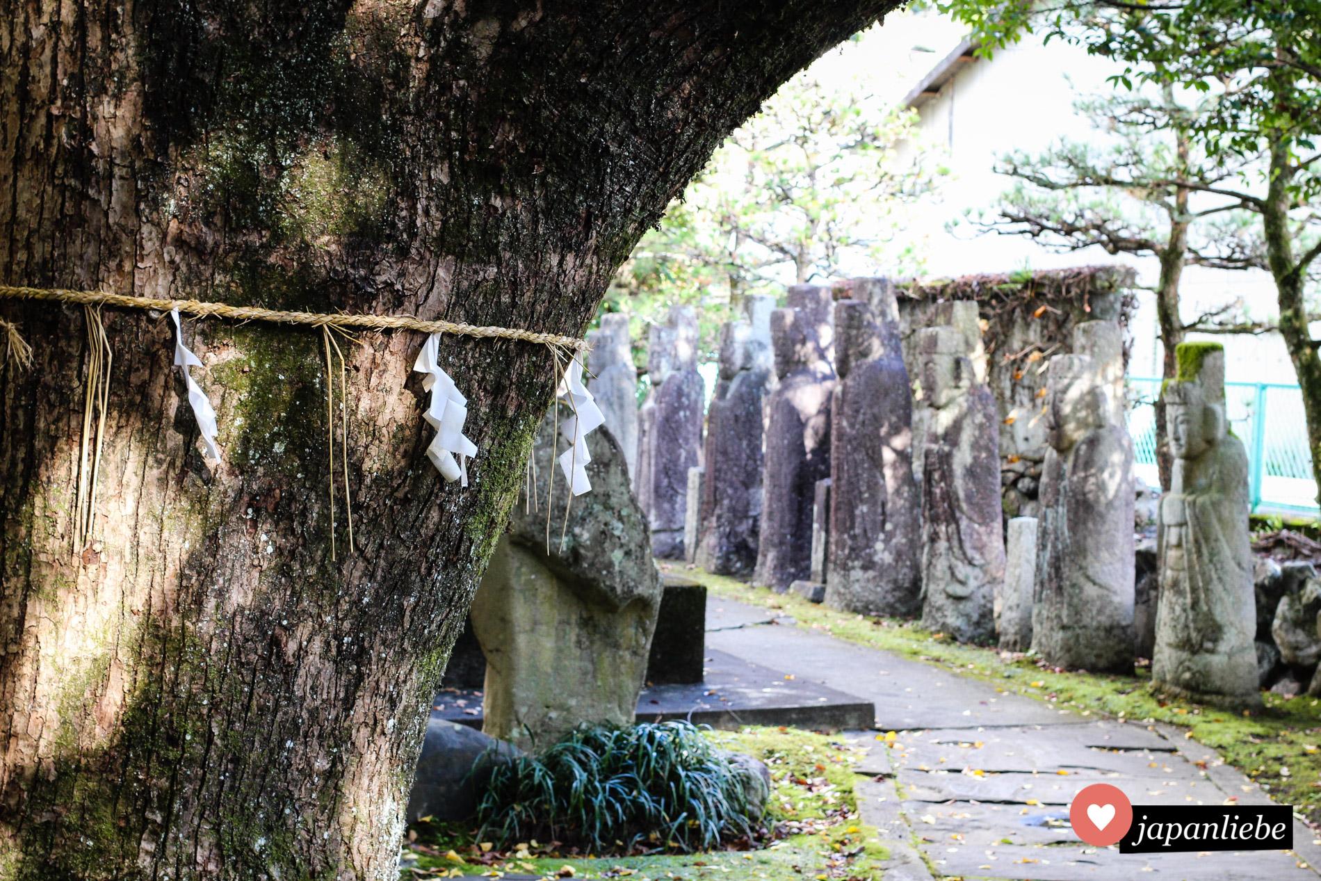 Ein als heilig markierter Baum und Steinstatuen am Taga-Schrein in Uwajima.
