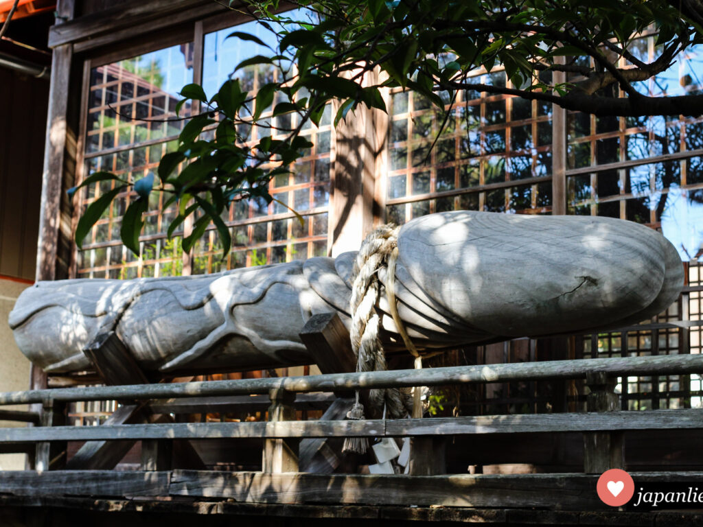 Kennzeichen des Taga-Schreins in Uwajima ist ein etwa 2 Meter großer hölzerner Phallus.