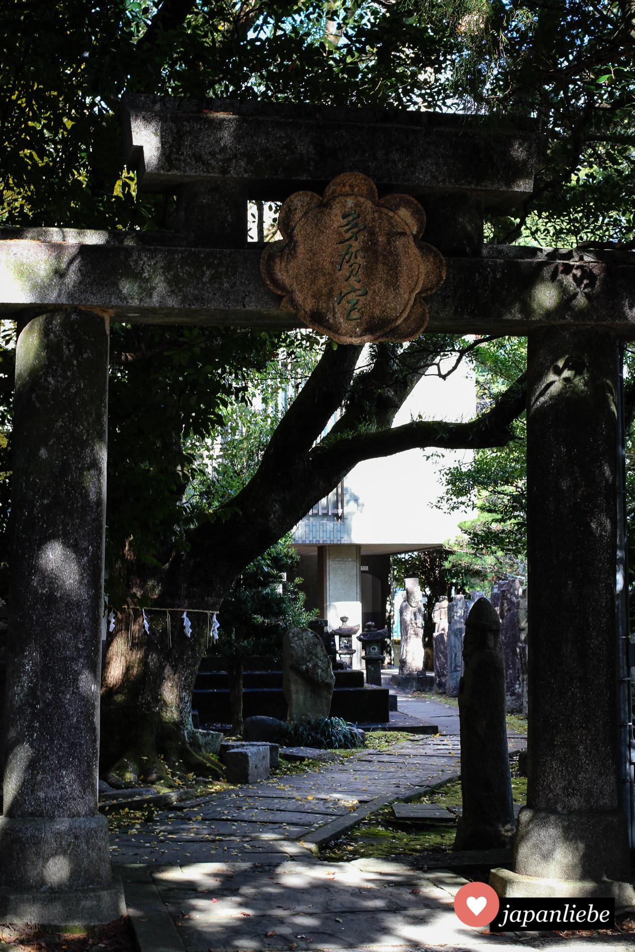 Das Eingangstor zum Taga-Schrein.
