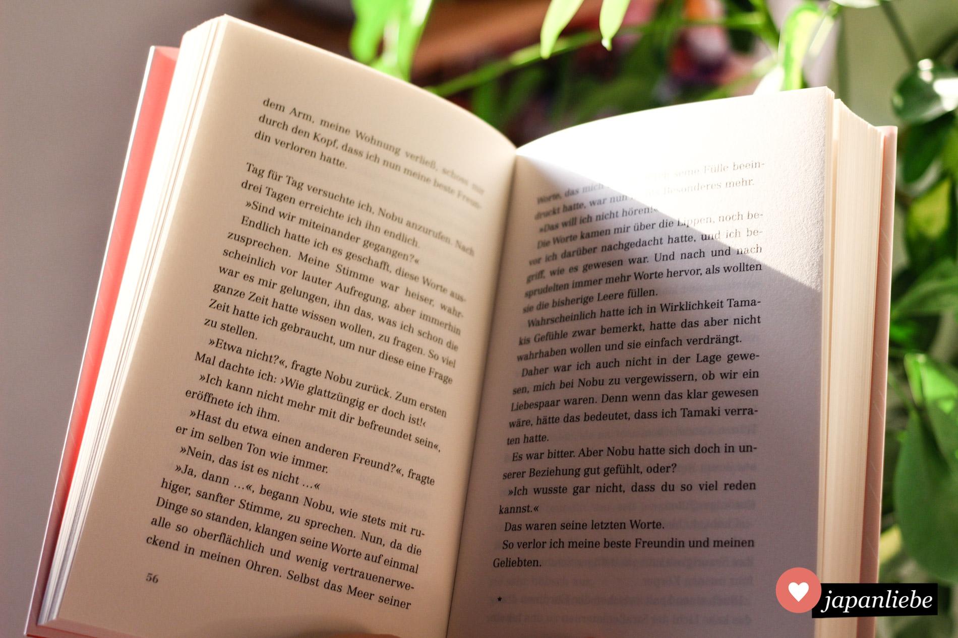 Ein Blick ins Buch.