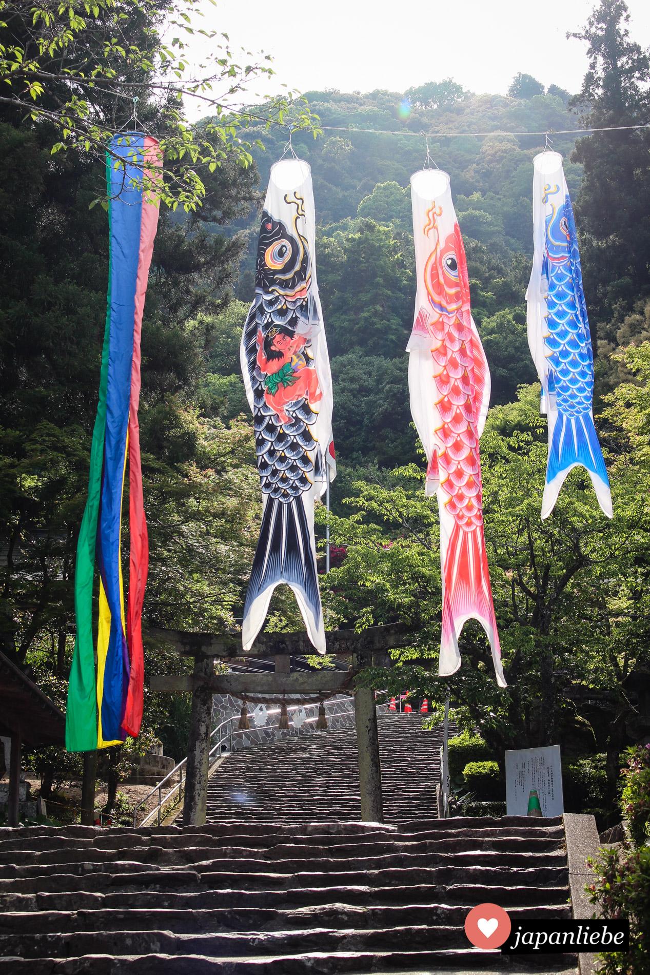 Die Karpfenflaggen sind mir noch nicht oft am Schrein begegnet. In Yamaguchi am Dai-jingū zum ersten Mal.