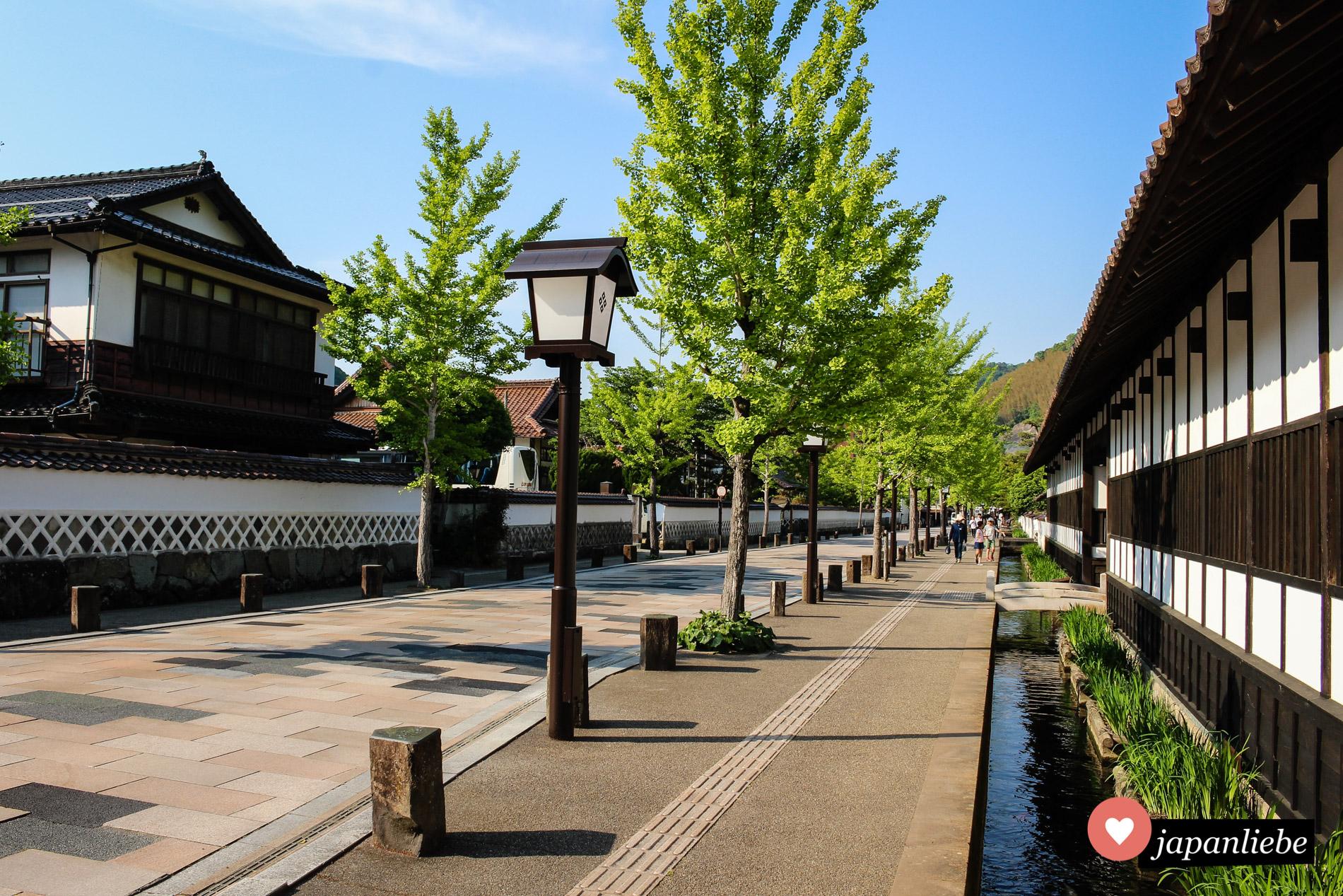 Tsuwanos Straßen sind gesäumt von Wasserrinnen, in den sich hunderte farbige Koi-Karpfen tummeln.