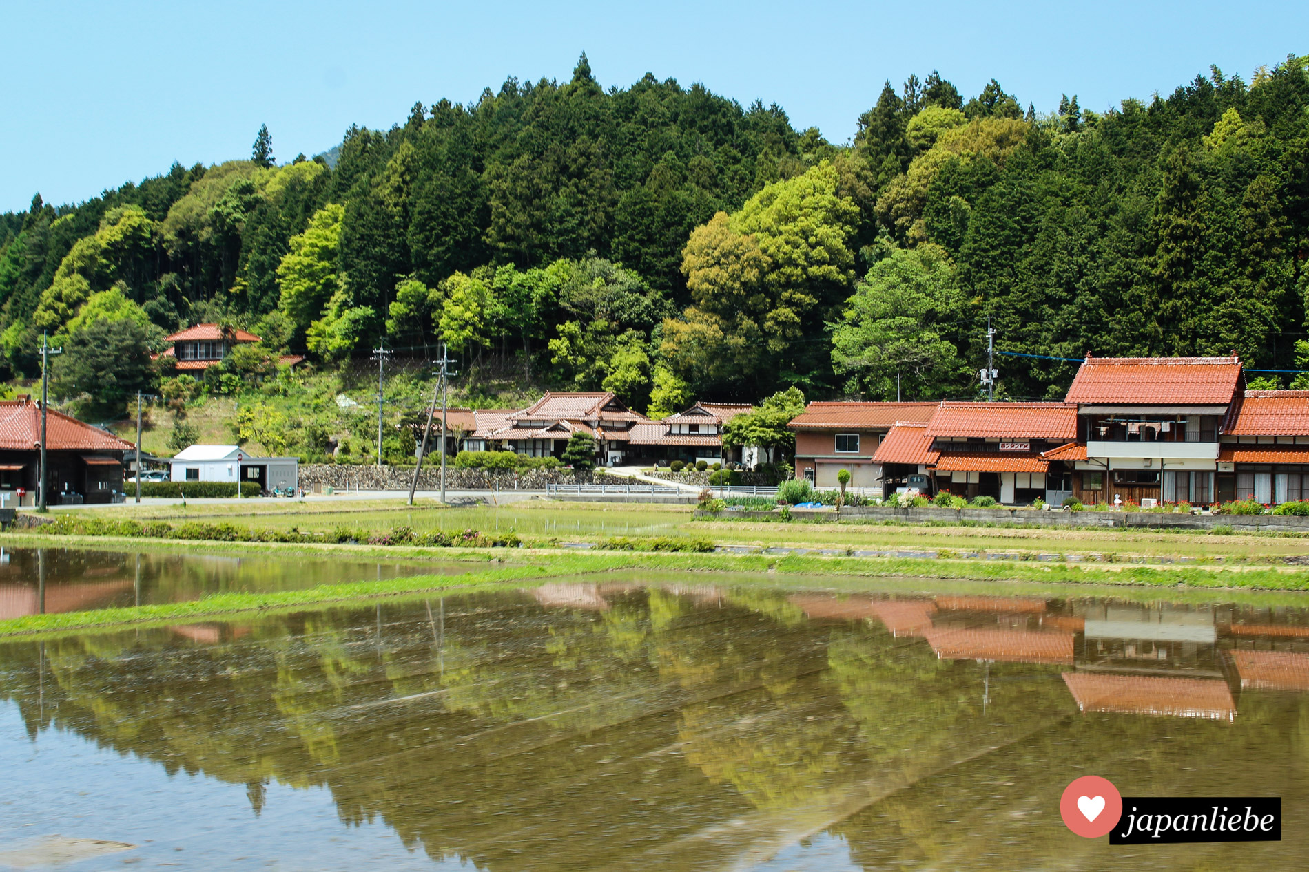 Die SL Yamaguchi durchquert die Präfektur Yamaguchi mit ihren grünen Reisfeldern und Bambushainen.