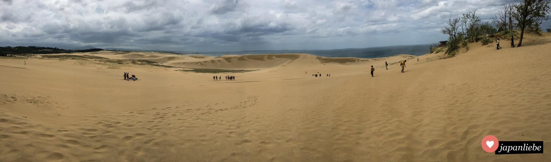 Nur ein kleiner Ausschnitt des knapp 16km langen Wüstenstreifens.