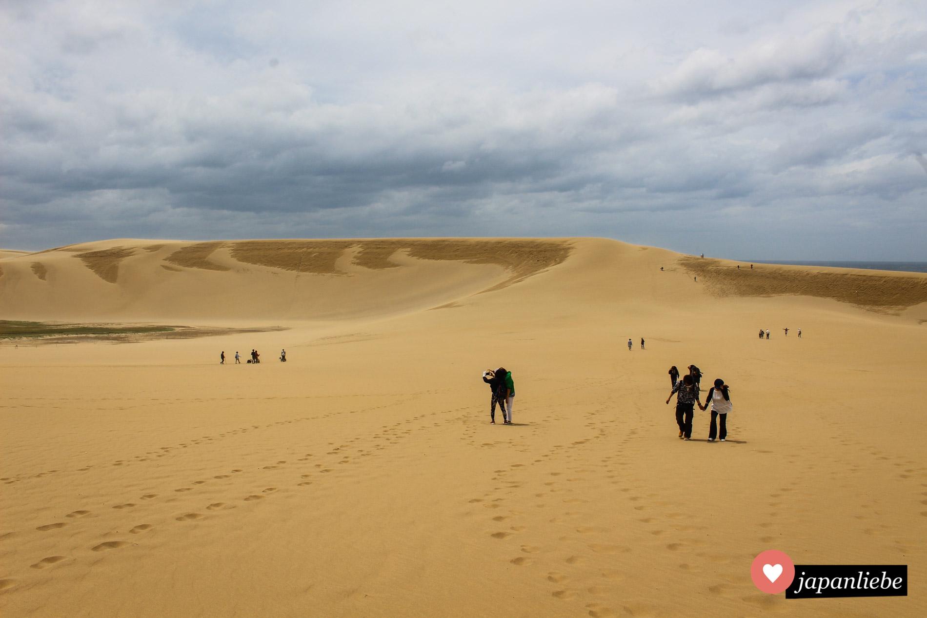 Touristen machen sich auf den Weg zu ihrer eigenen, kleinen Wüstenexpedition.