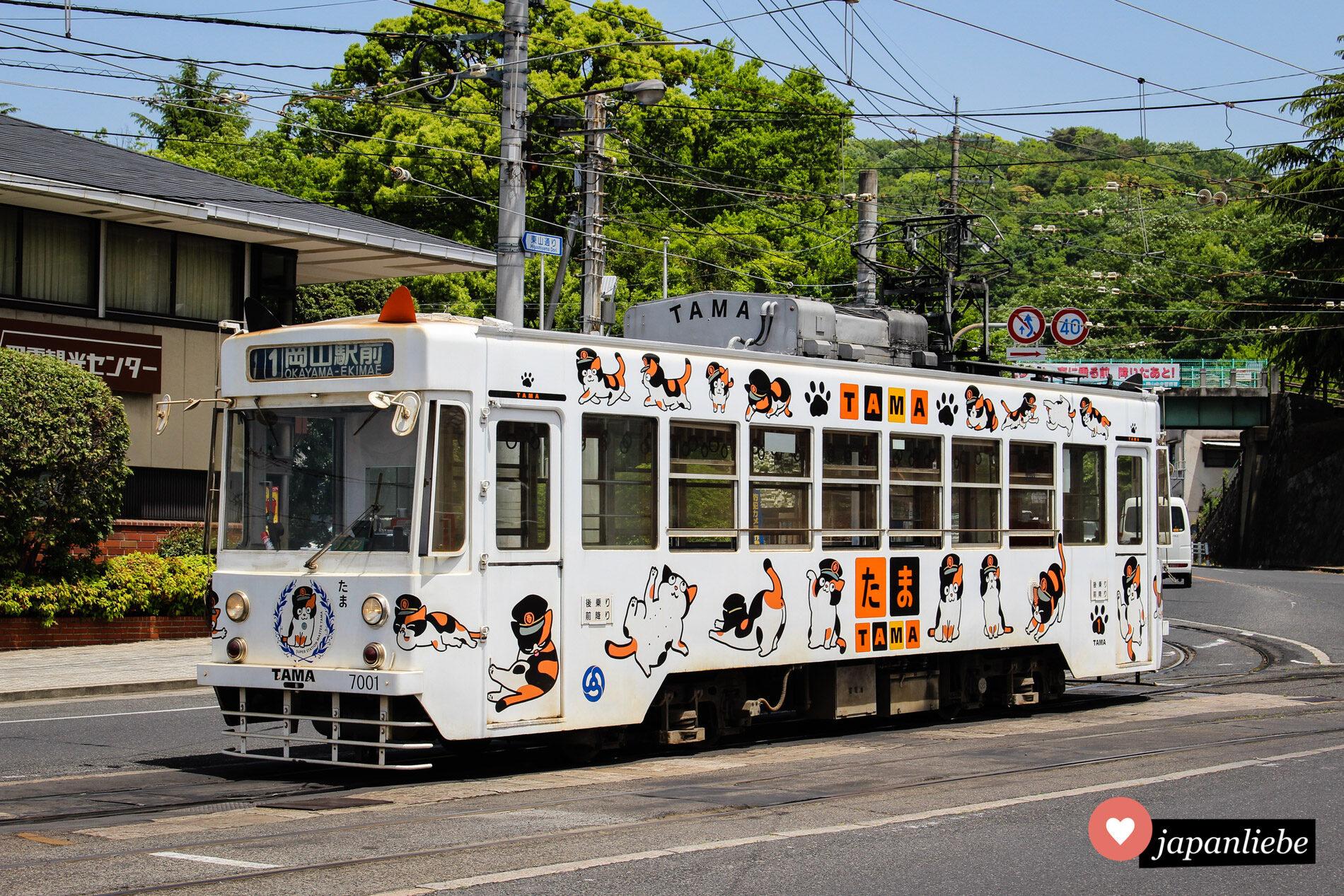 Die Katzentram von Okayama.