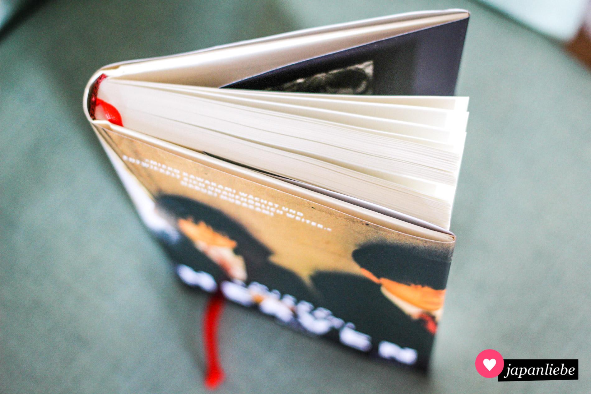 Mit weniger als 200 Seiten ist das Buch in Nullkommanix verschlungen.